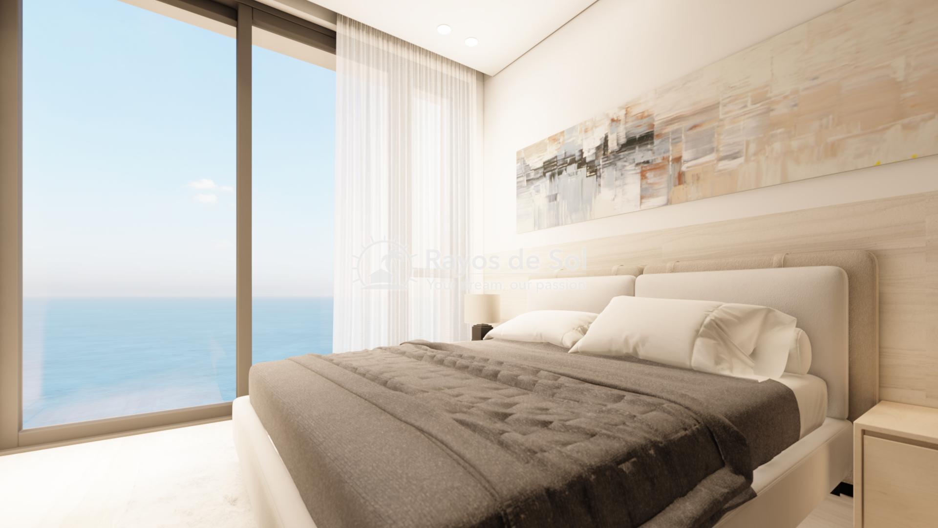 First line apartments  in La Mata, Costa Blanca (LMIMEM2-2) - 6