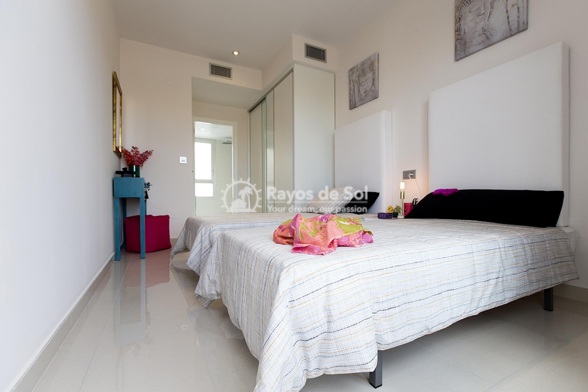Modern Villa  in Villamartin, Costa Blanca (VISUAUIV3-4) - 12