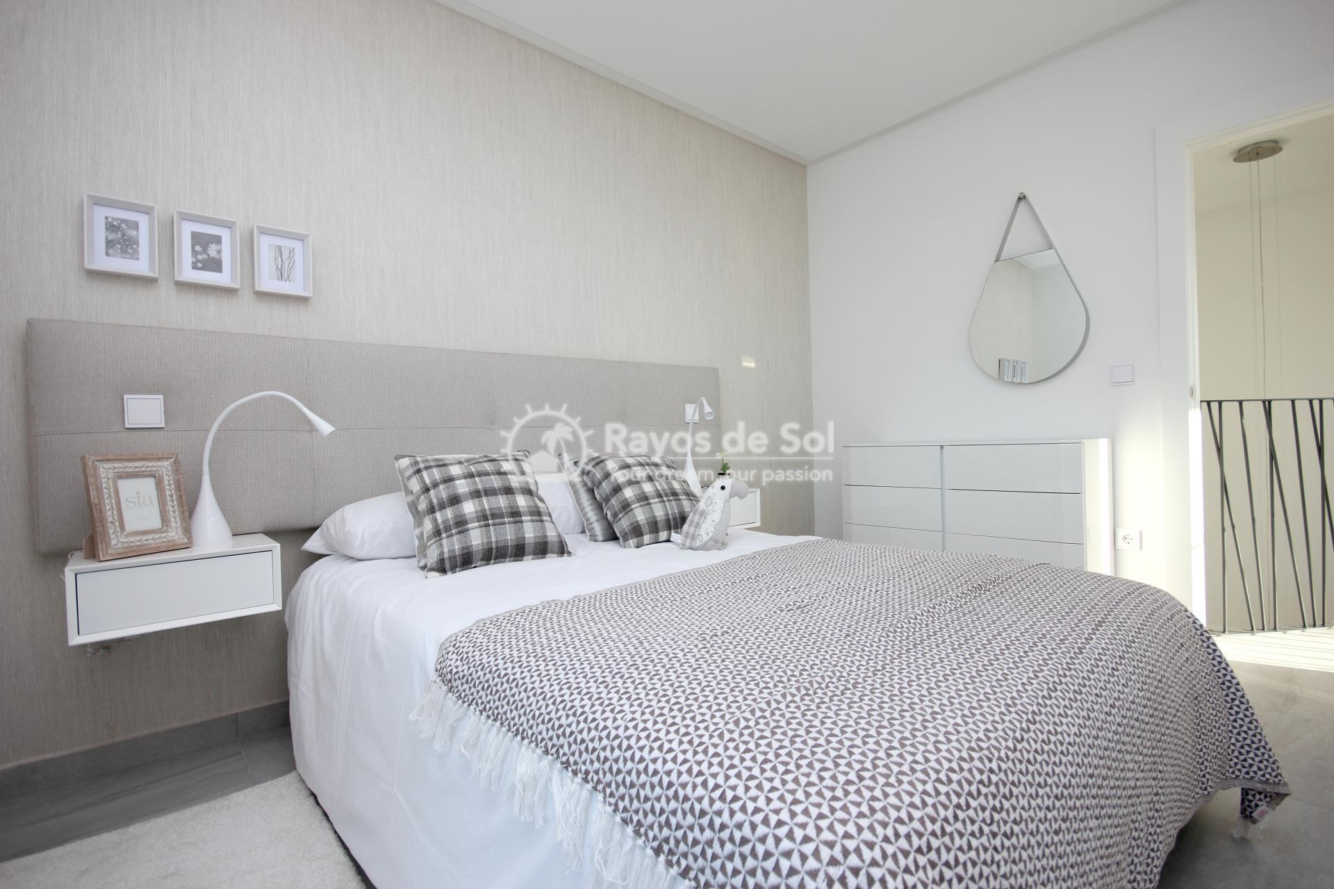 Villa  in Benijofar, Costa Blanca (BEMEPA) - 20