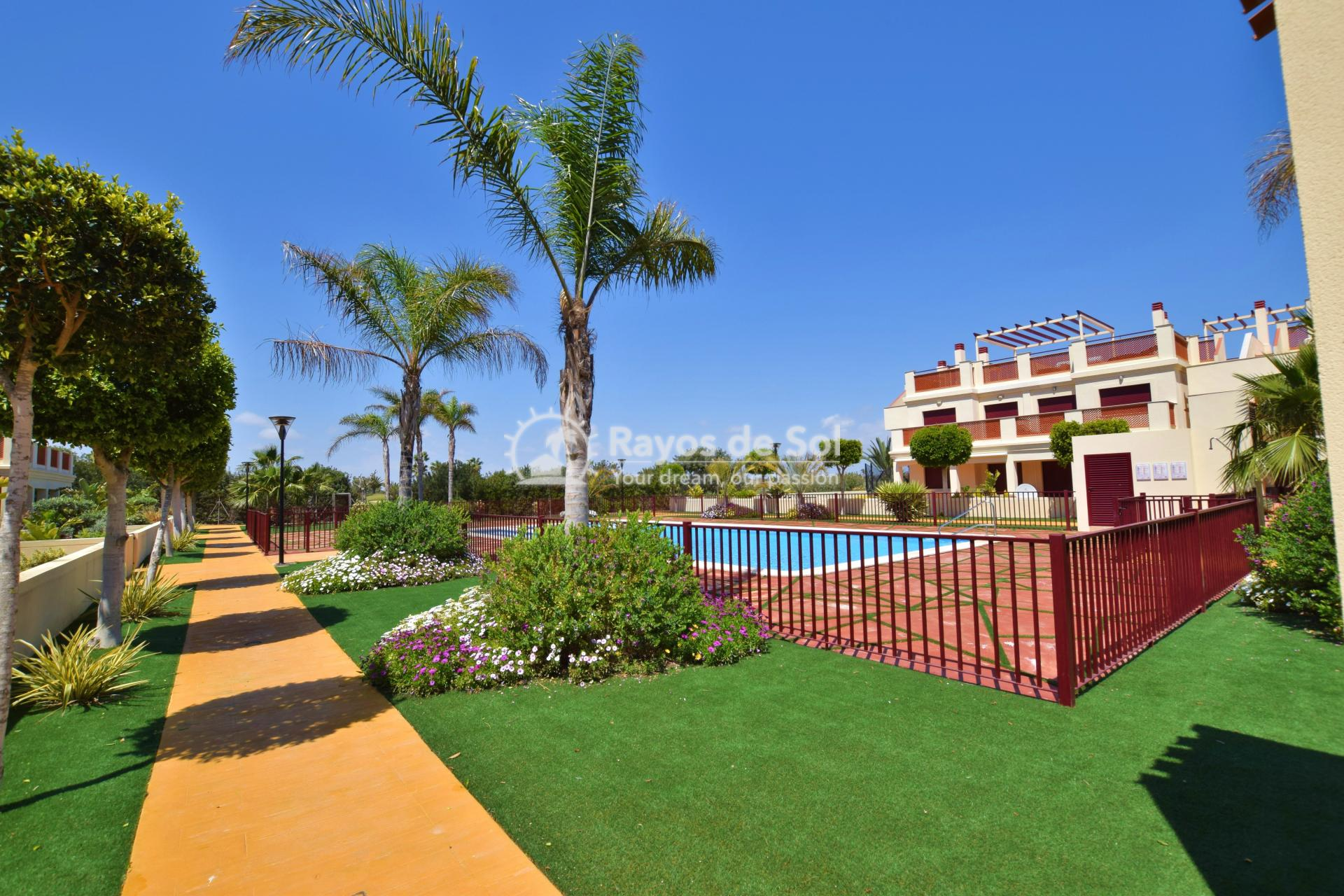 Ground floor apartment  in Los Alcazares, Costa Cálida (LAVPVGB) - 21