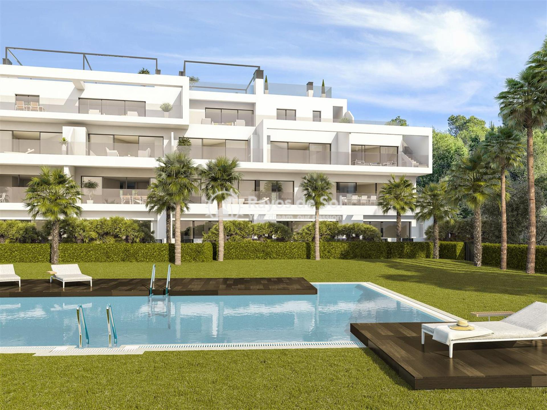 Ground floor apartment  in Las Colinas, Orihuela Costa, Costa Blanca (Hinojo-gf3d) - 3