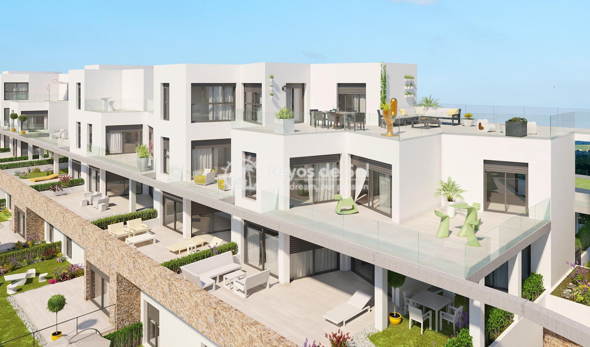 Penthouse  in Villamartin, Costa Blanca (VIPASO3-2P) - 3