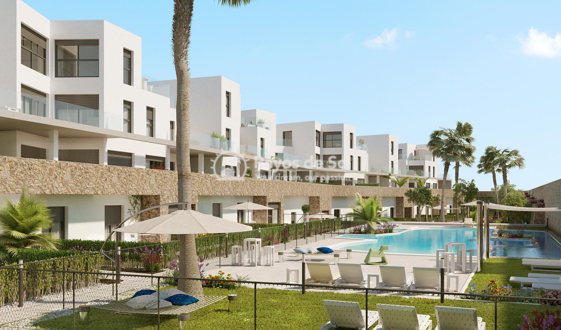 Ground floor apartment  in Villamartin, Costa Blanca (VIPASO3-2B) - 20