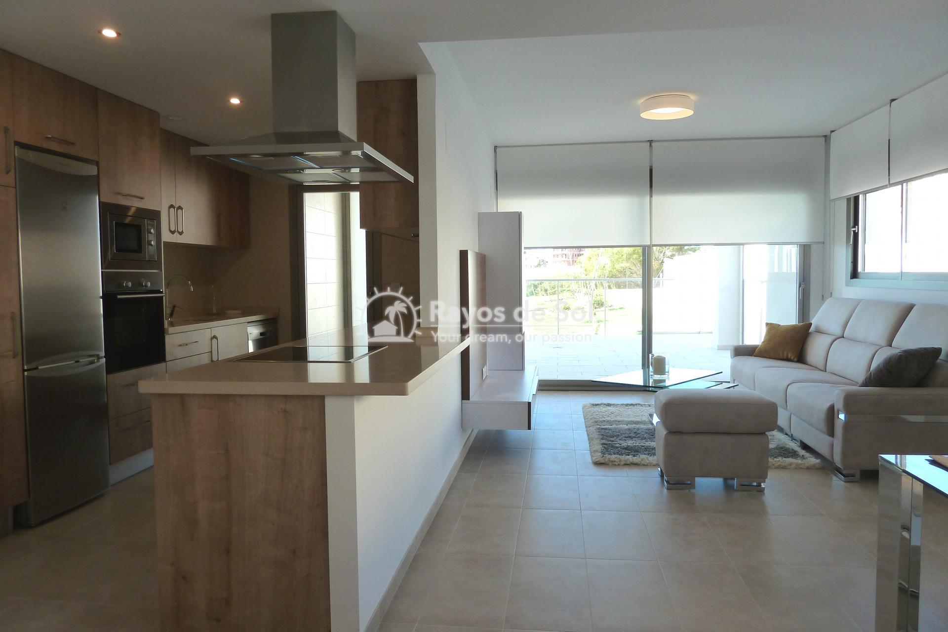 Penthouse  in Villamartin, Costa Blanca (VIVG3-2P) - 6