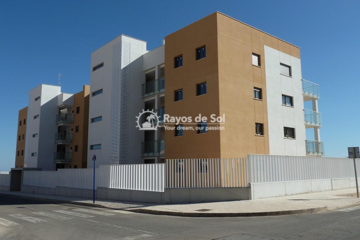 Penthouse  in Villamartin, Costa Blanca (VIVG2-2P) - 14