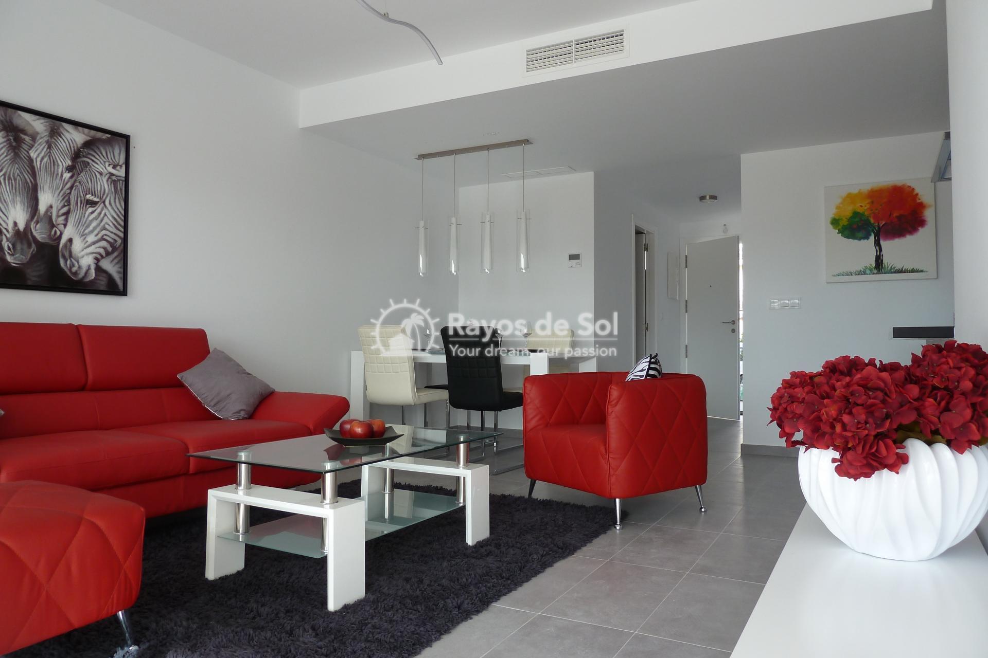 Penthouse  in Villamartin, Costa Blanca (VIVG2-2P) - 4
