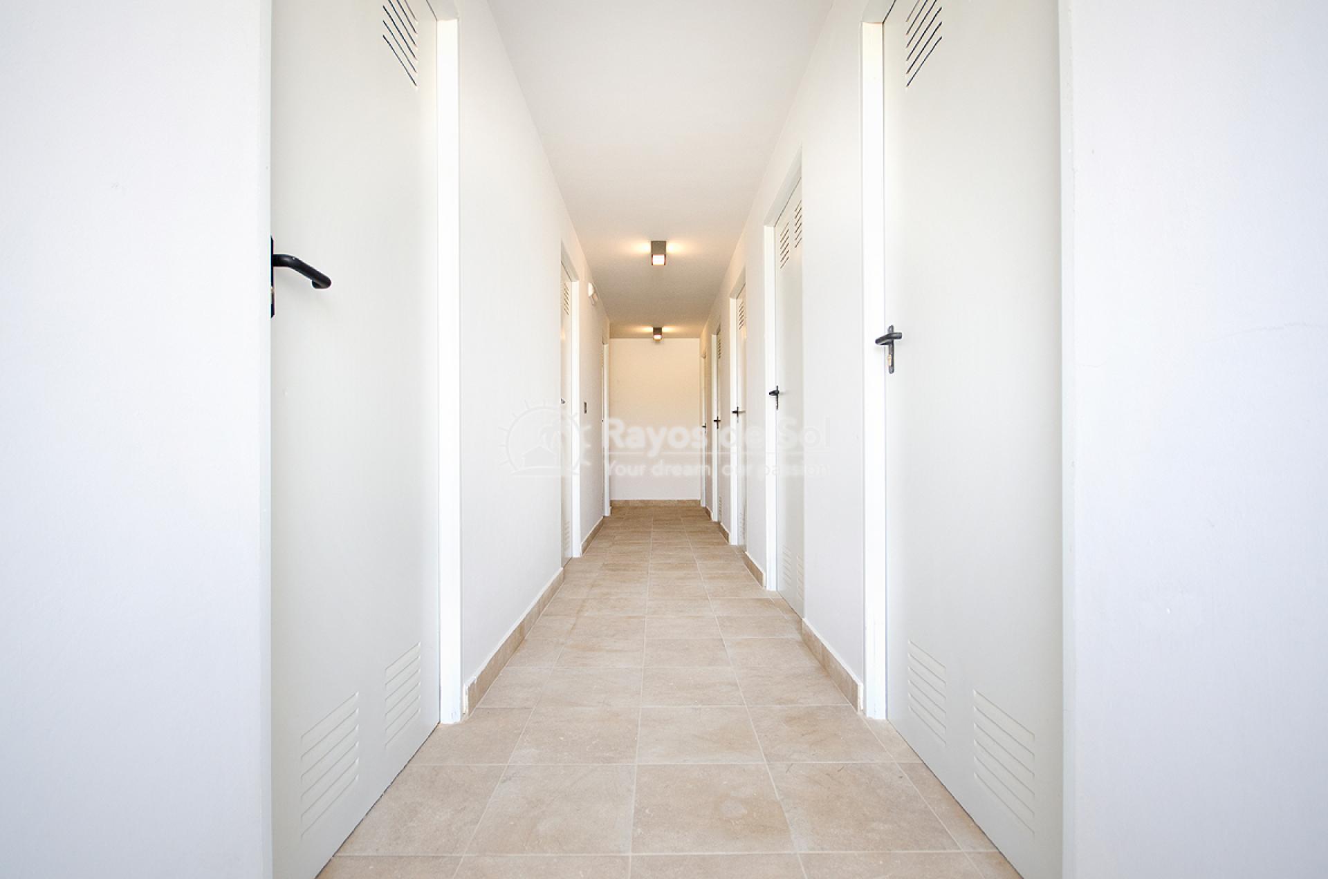 Golf apartment ground floor in Las Ramblas, Villamartin, Costa Blanca (VIPALO3-2B) - 27