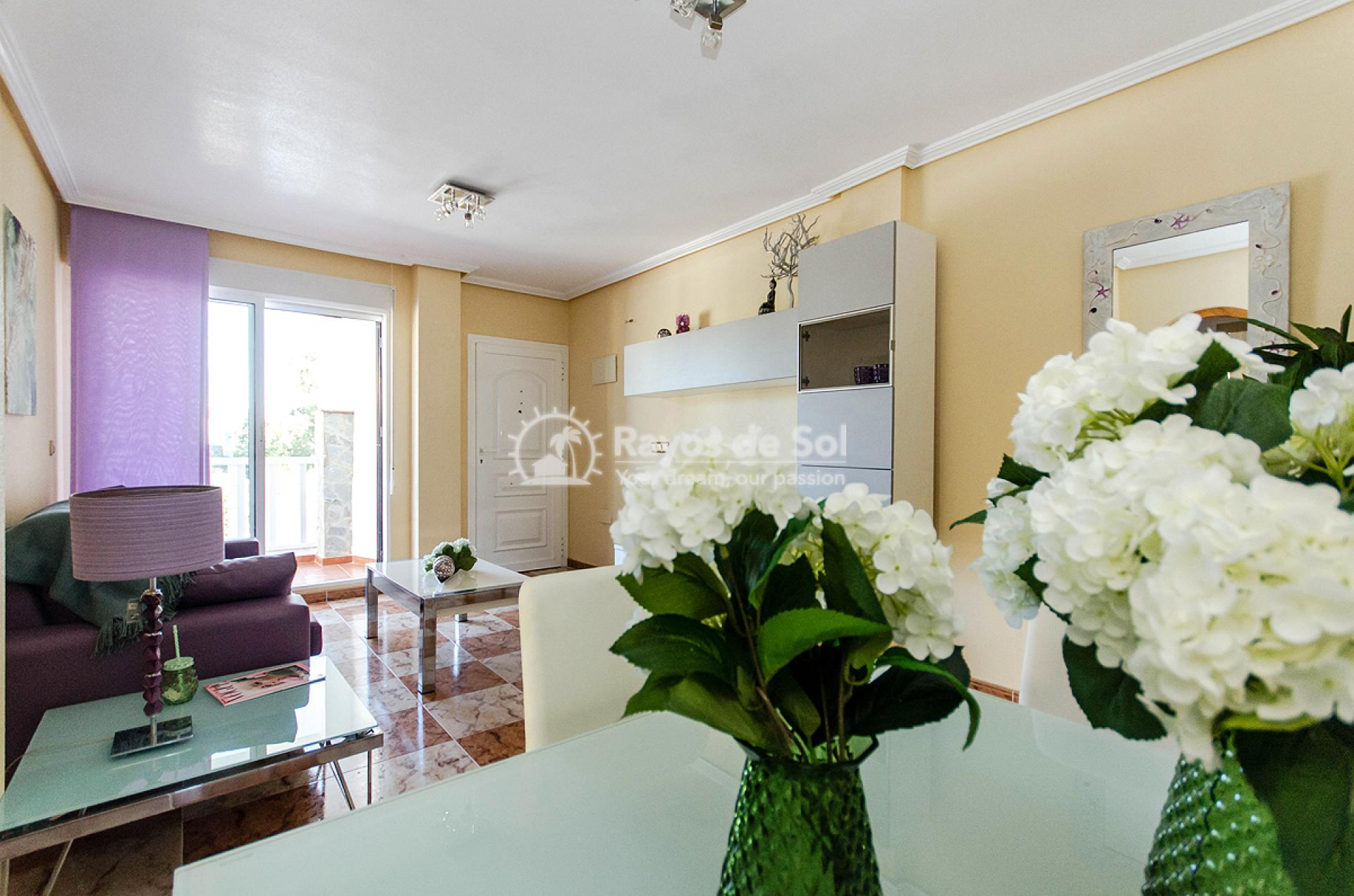 Ground floor apartment  in Orihuela Costa, Costa Blanca (OCSUPG) - 4