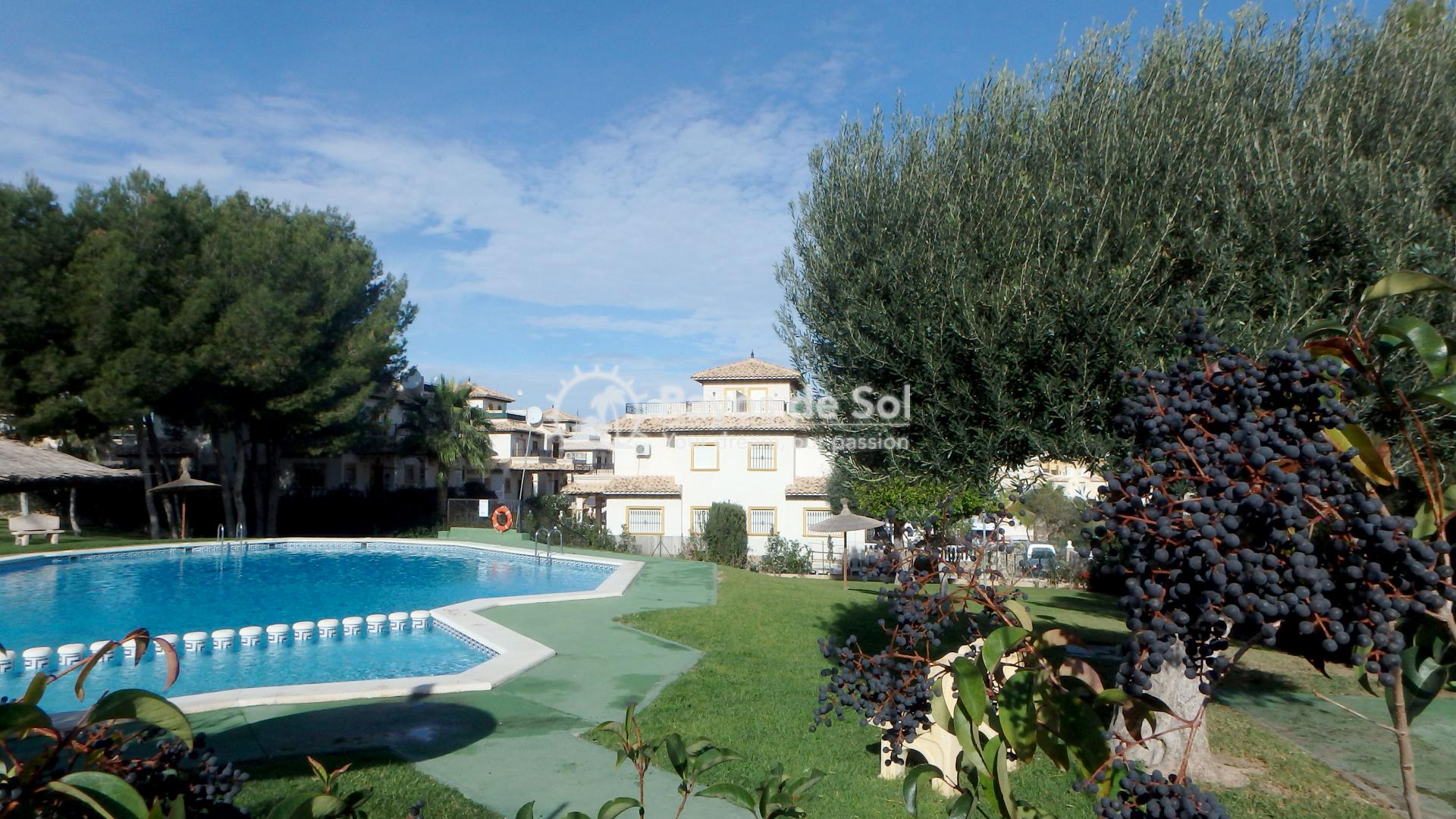 Ground floor apartment  in Orihuela Costa, Costa Blanca (OCSUPG) - 45