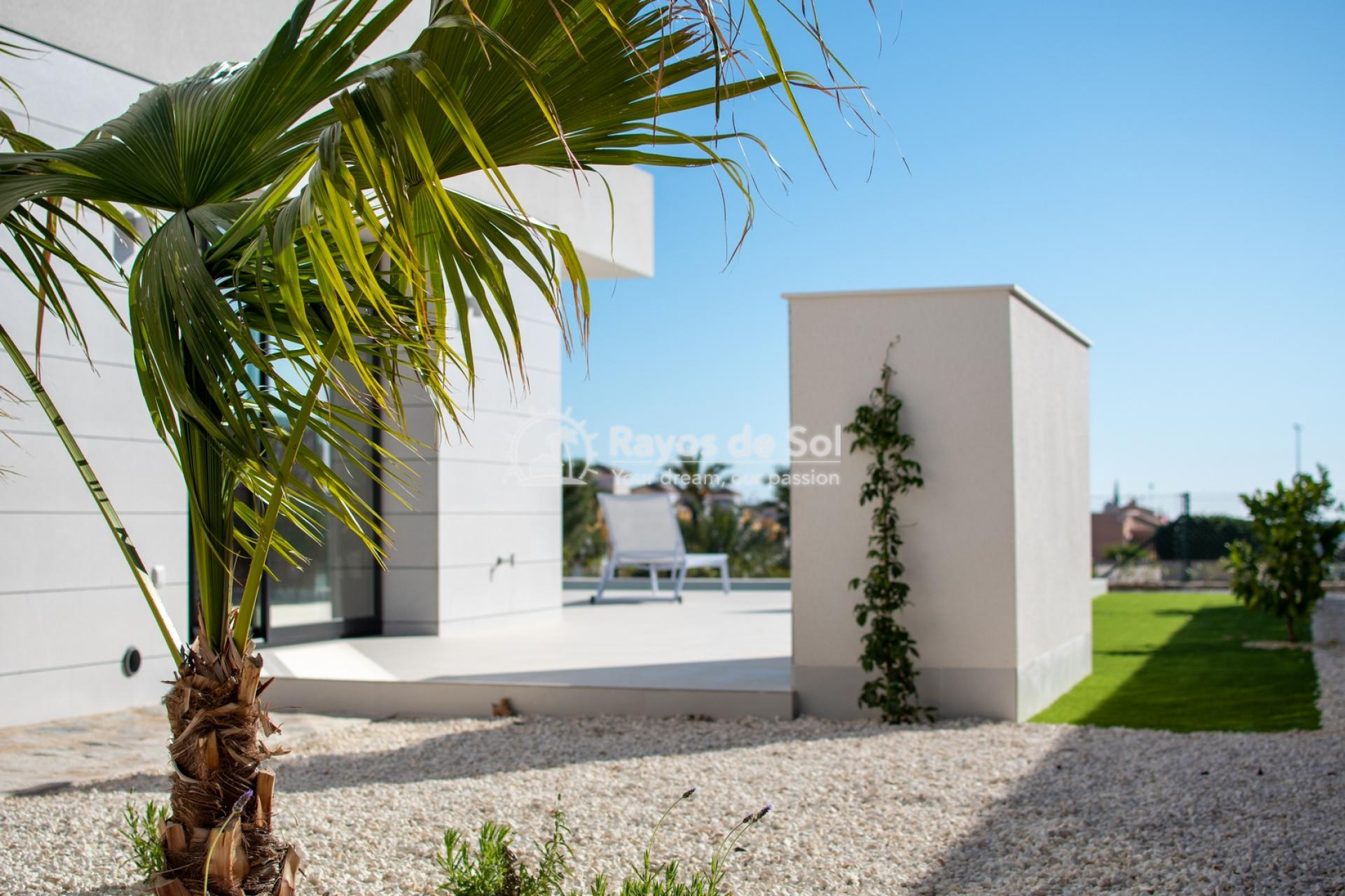 Detached villa  in Los Montesinos, Costa Blanca (montesinosv-3d) - 18