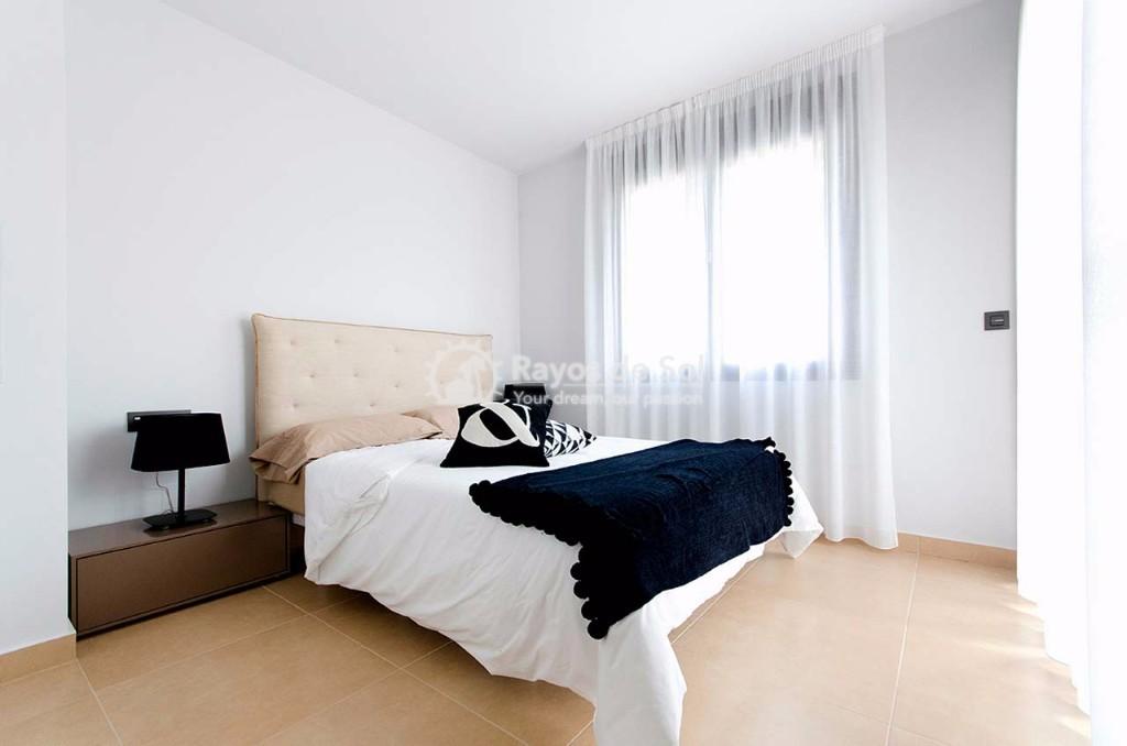 Ground Floor Apartment  in Algorfa, Costa Blanca (lagos-onega-gf) - 6