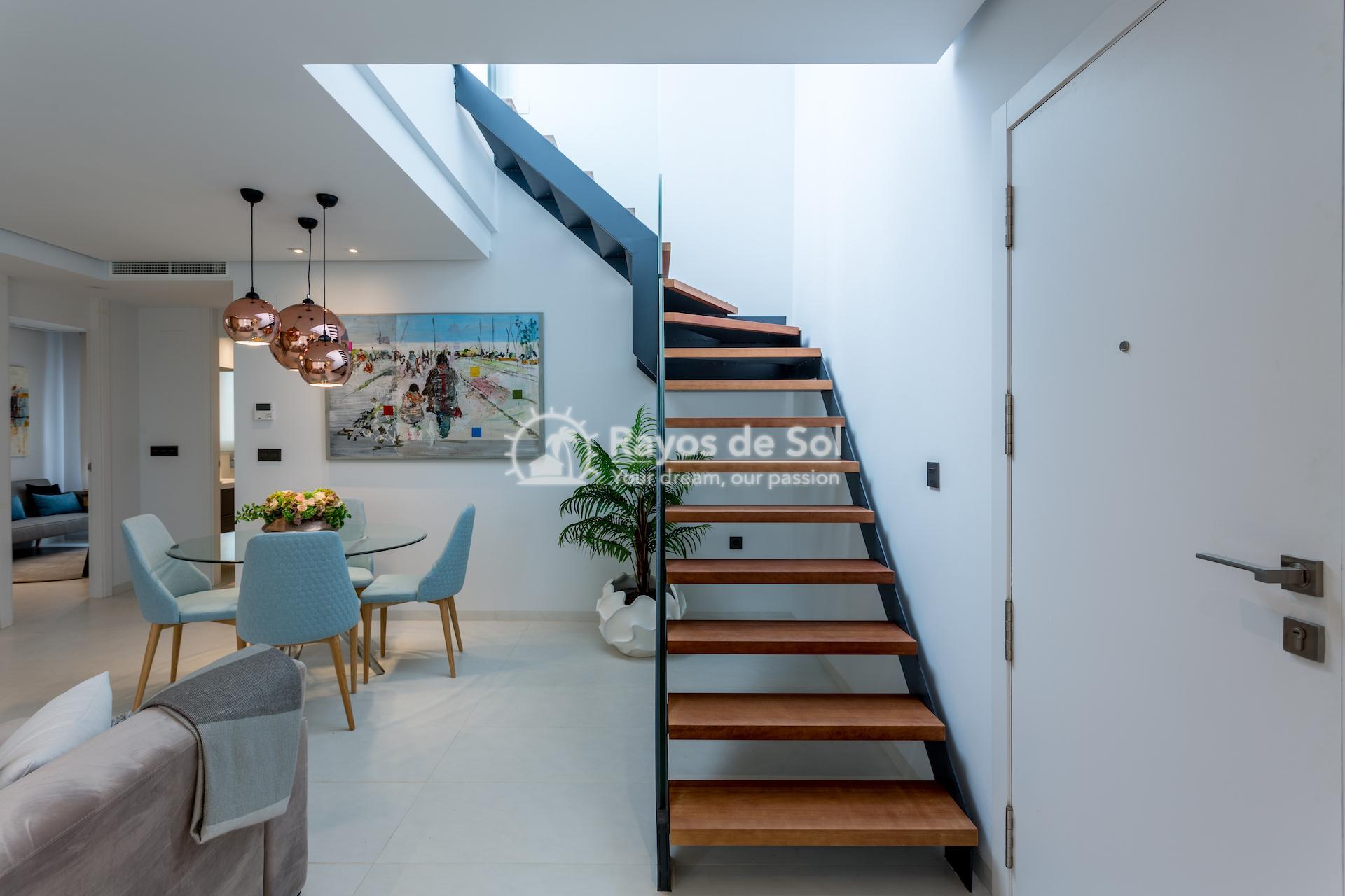 Penthouse  in Mil Palmeras, Costa Blanca (bioko2-3d) - 11
