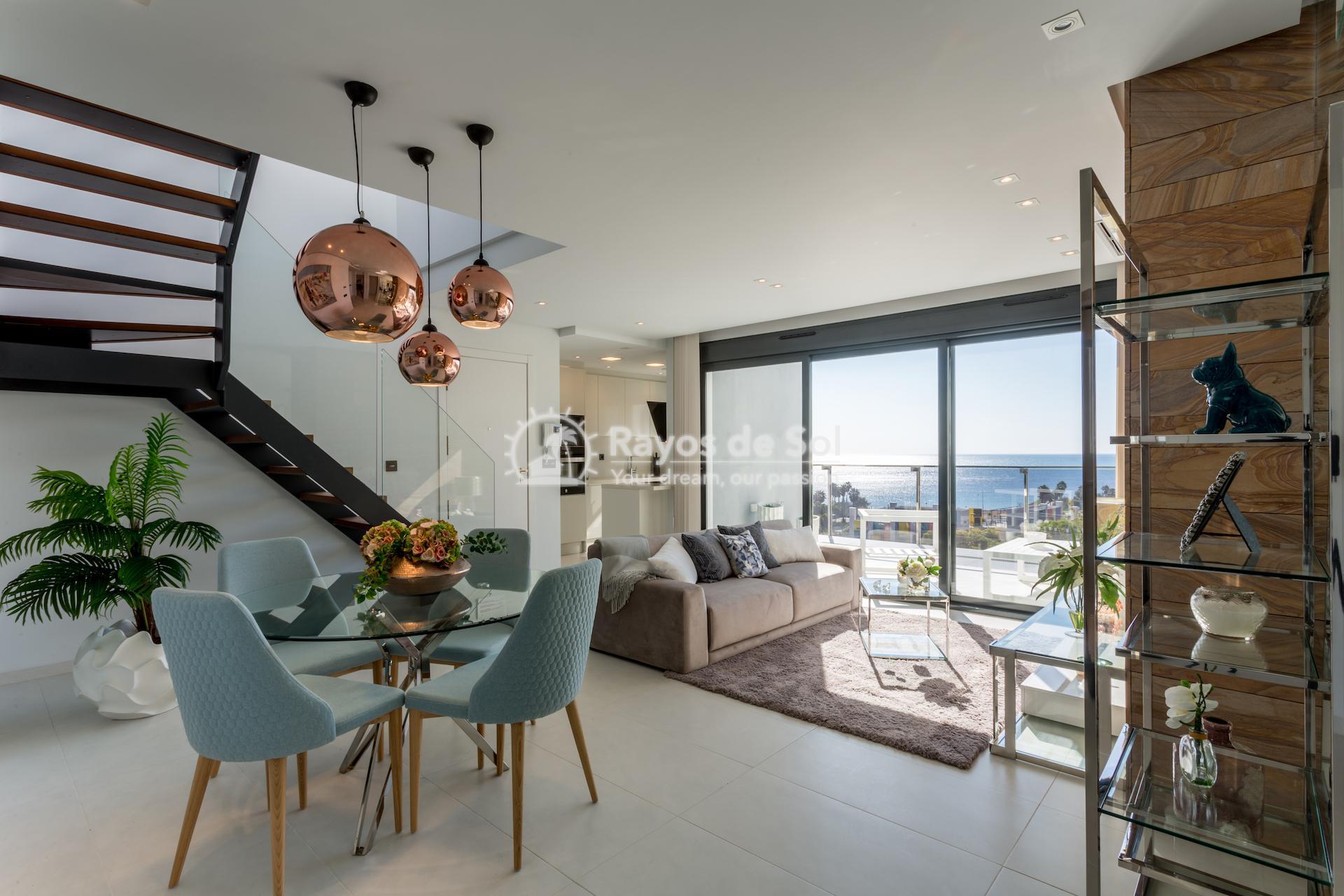 Penthouse  in Mil Palmeras, Costa Blanca (bioko2-3d) - 7