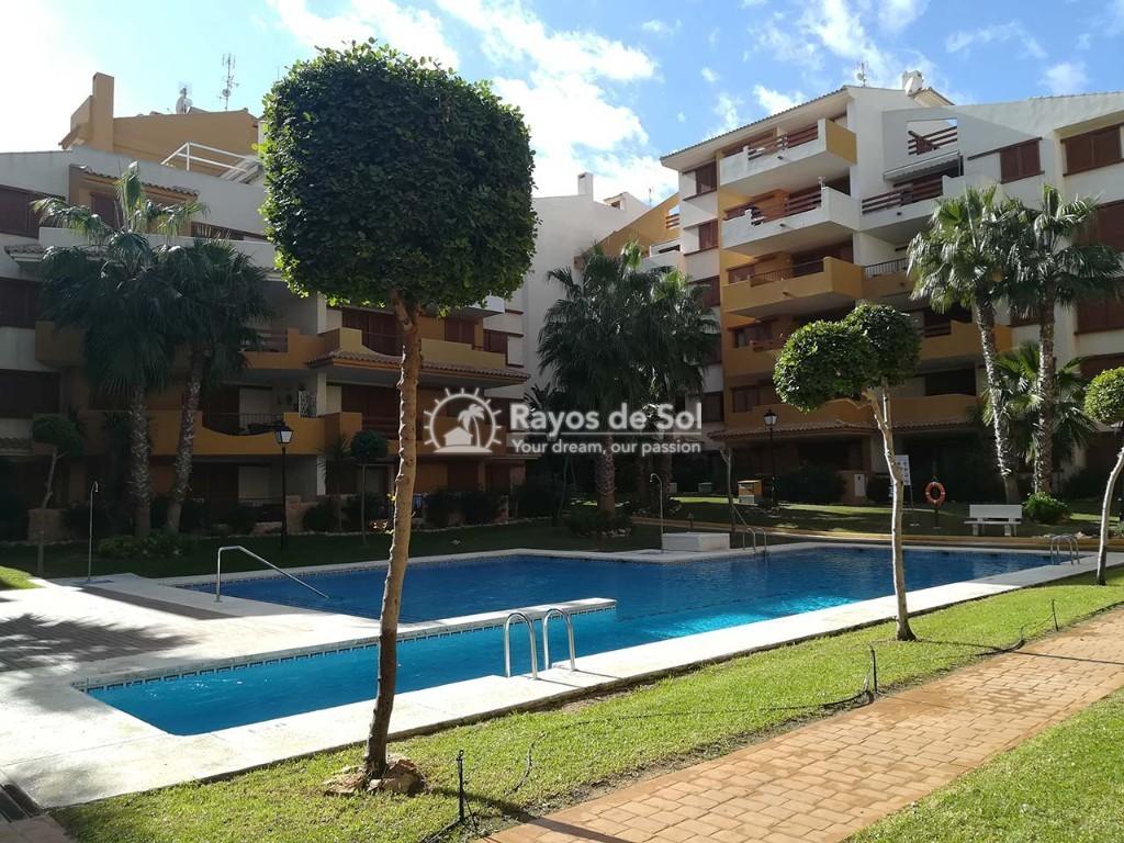 Apartment  in Punta Prima, Orihuela Costa, Costa Blanca (recoleta3-2d) - 21