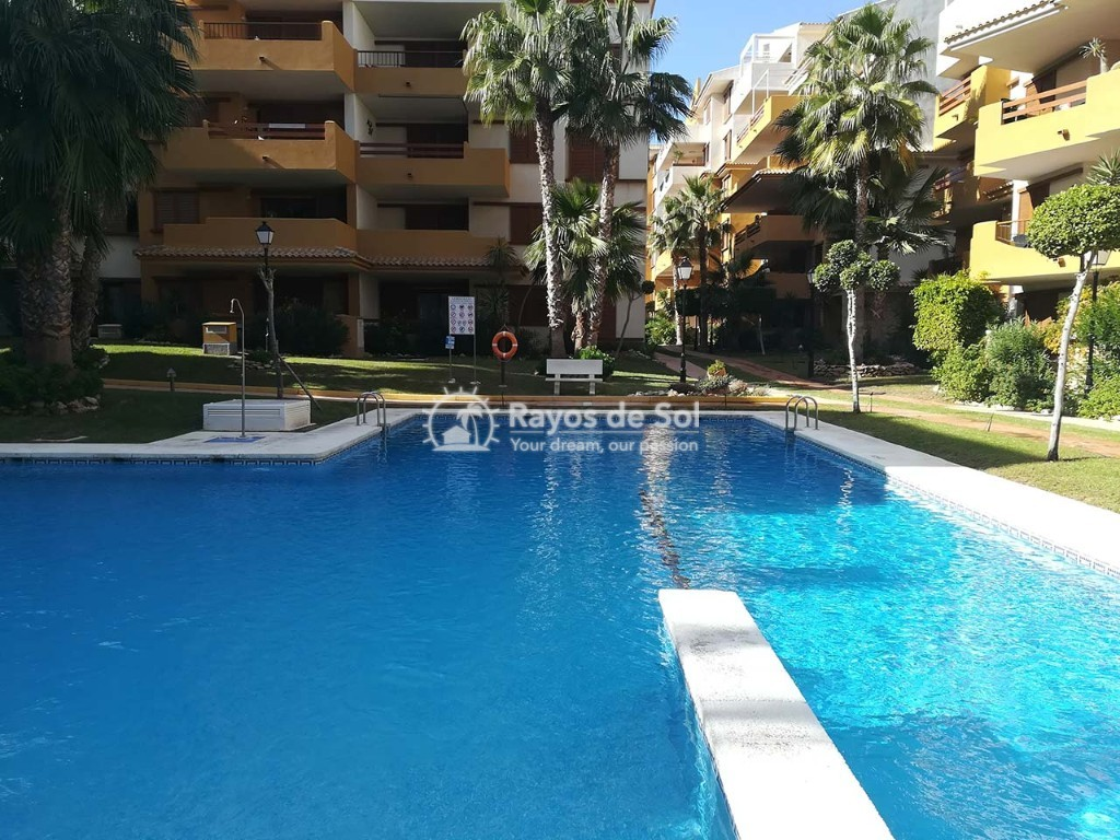 Apartment  in Punta Prima, Orihuela Costa, Costa Blanca (recoleta3-2d) - 23