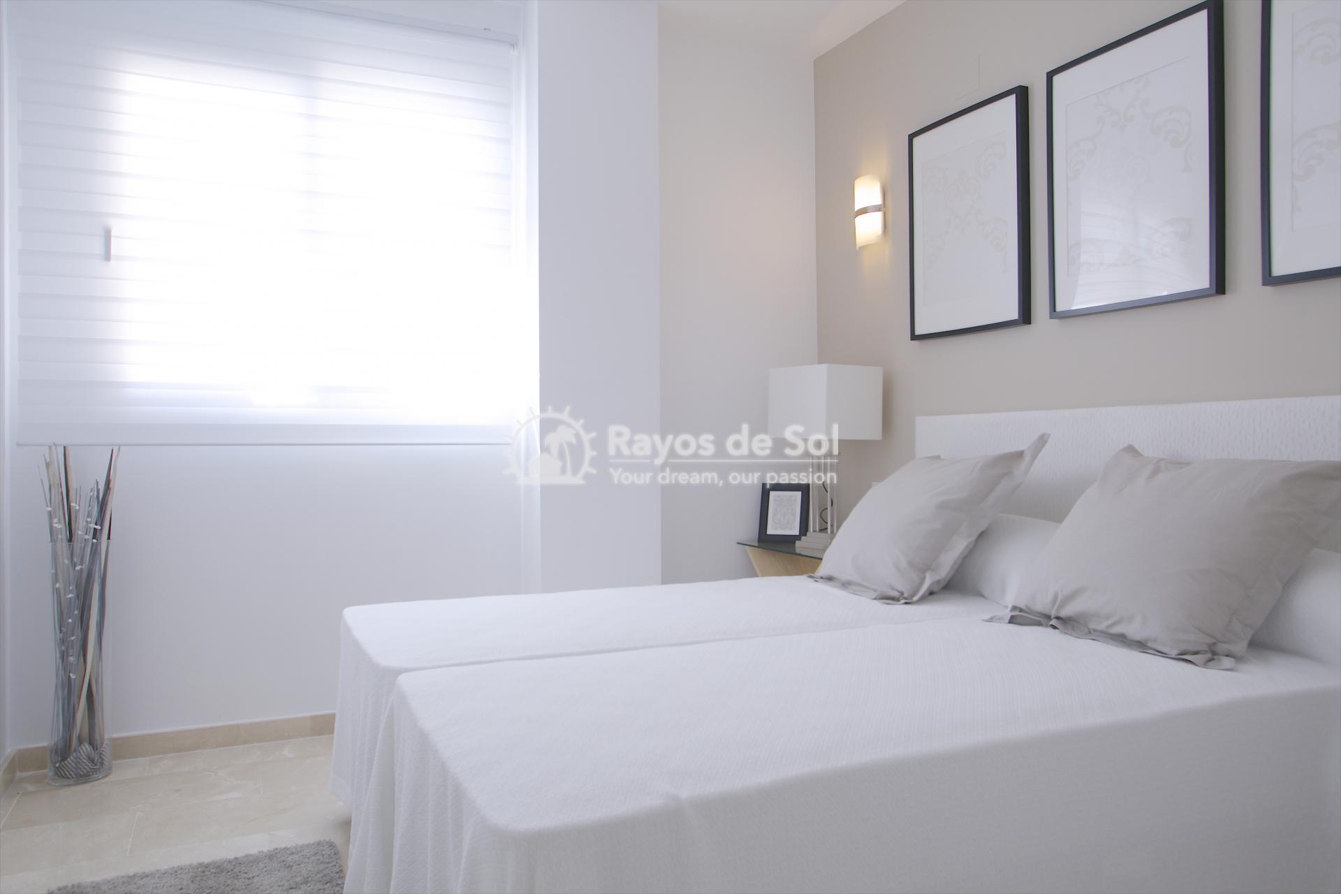 Apartment  in Punta Prima, Orihuela Costa, Costa Blanca (recoleta3-2d) - 14