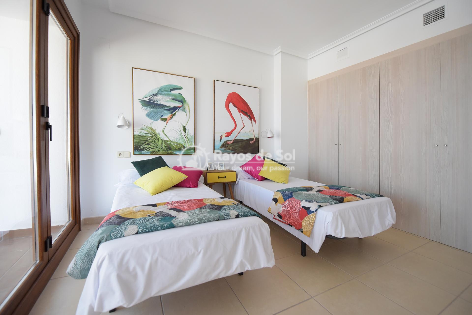 Apartment  in Gandía, Costa Blanca (xeresa-2d) - 8