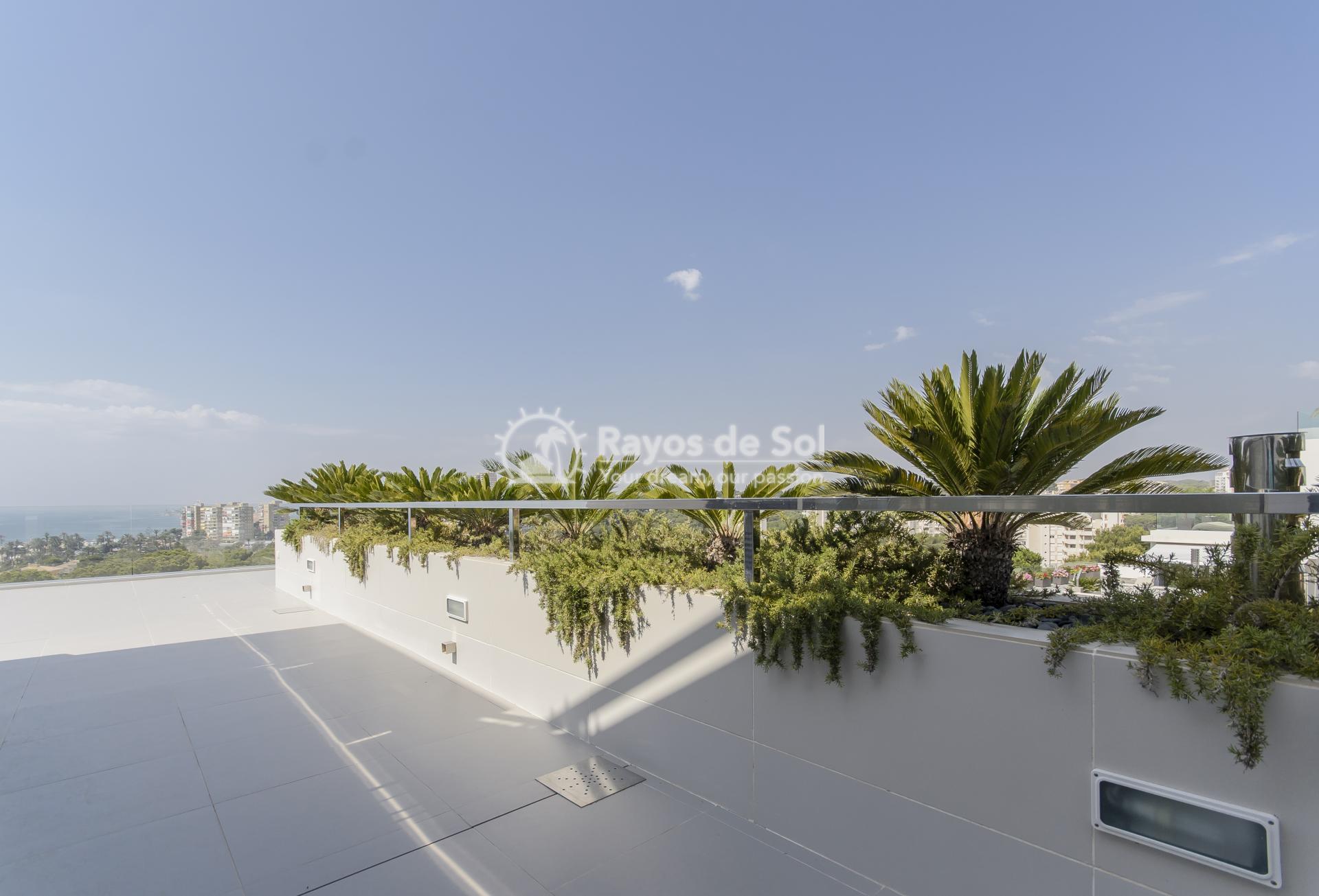 Villa  in Campoamor, Orihuela Costa, Costa Blanca (adeluxe-penelope) - 36
