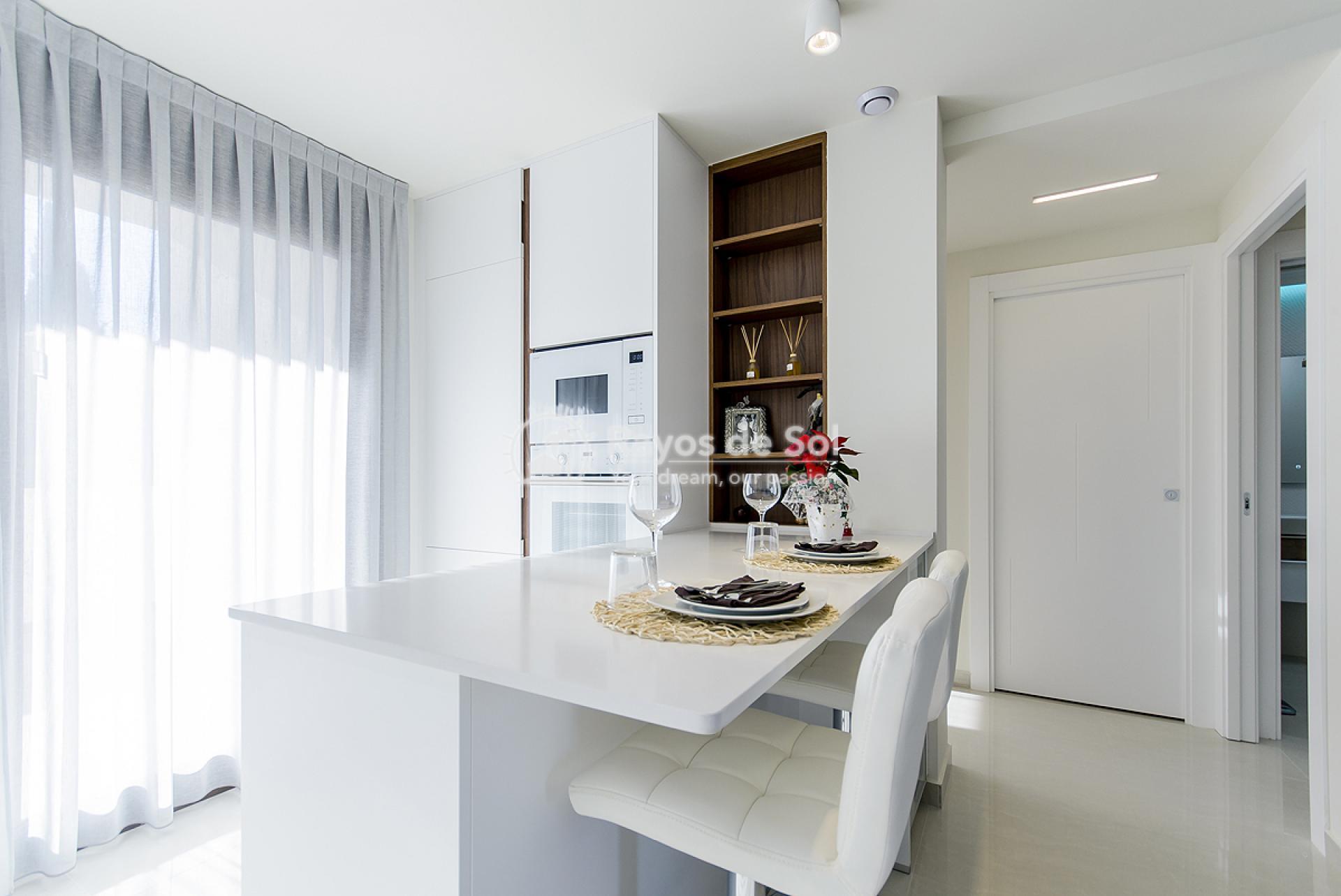 Ground Floor Apartment  in Torrevieja, Costa Blanca (balcones-gf2d) - 14
