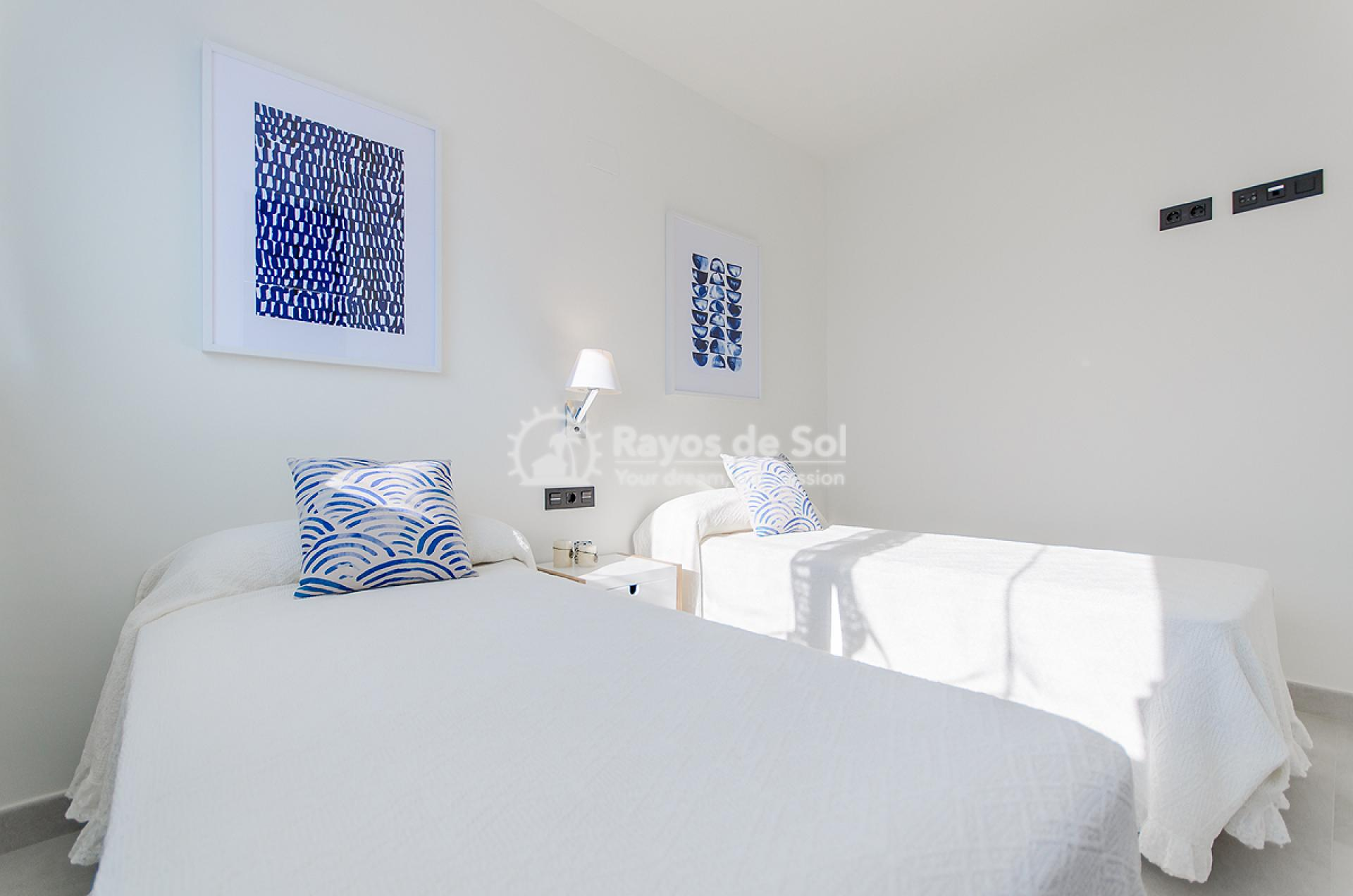 Penthouse  in Torrevieja, Costa Blanca (balcones-tf3d) - 7
