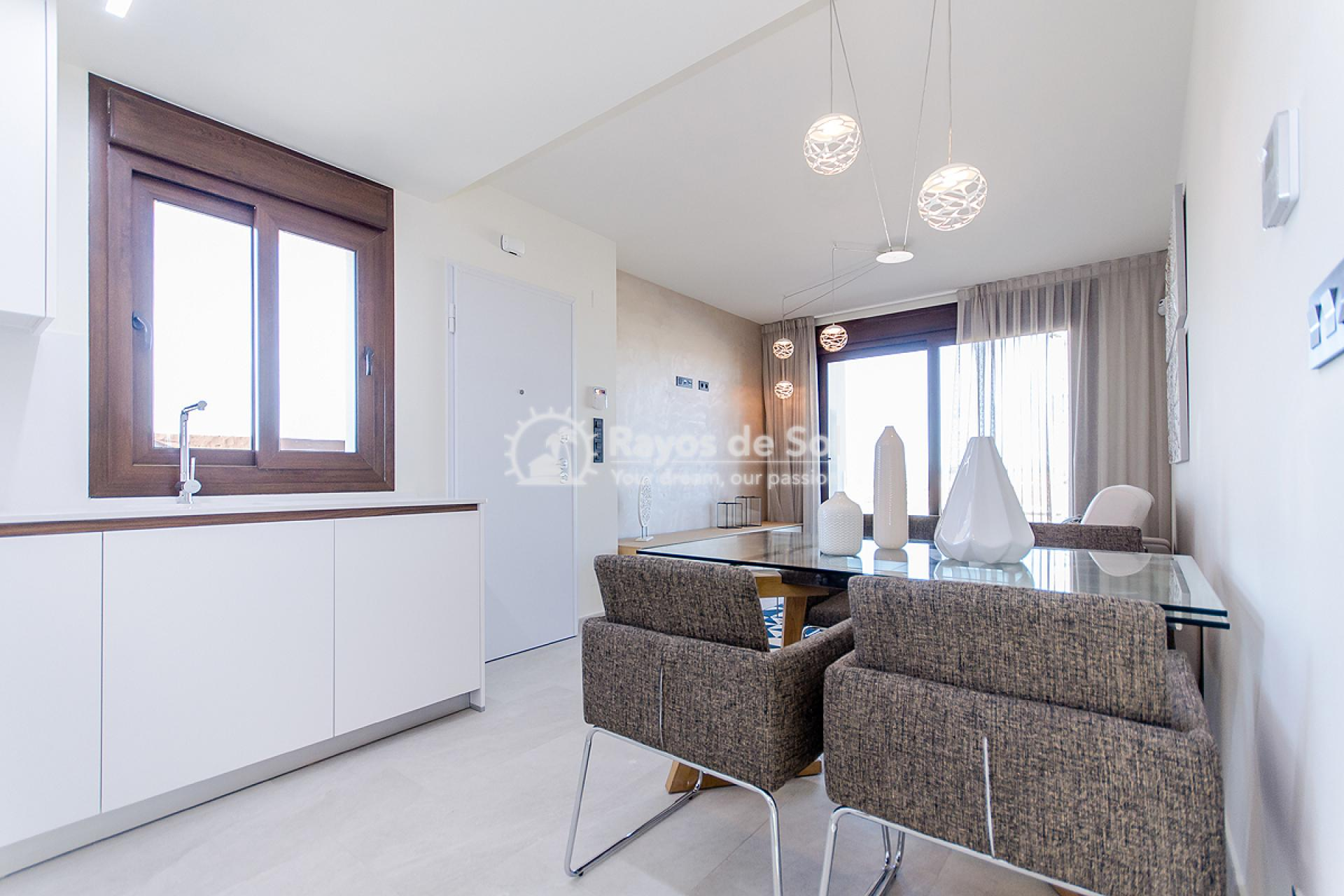 Penthouse  in Torrevieja, Costa Blanca (balcones-tf3d) - 31