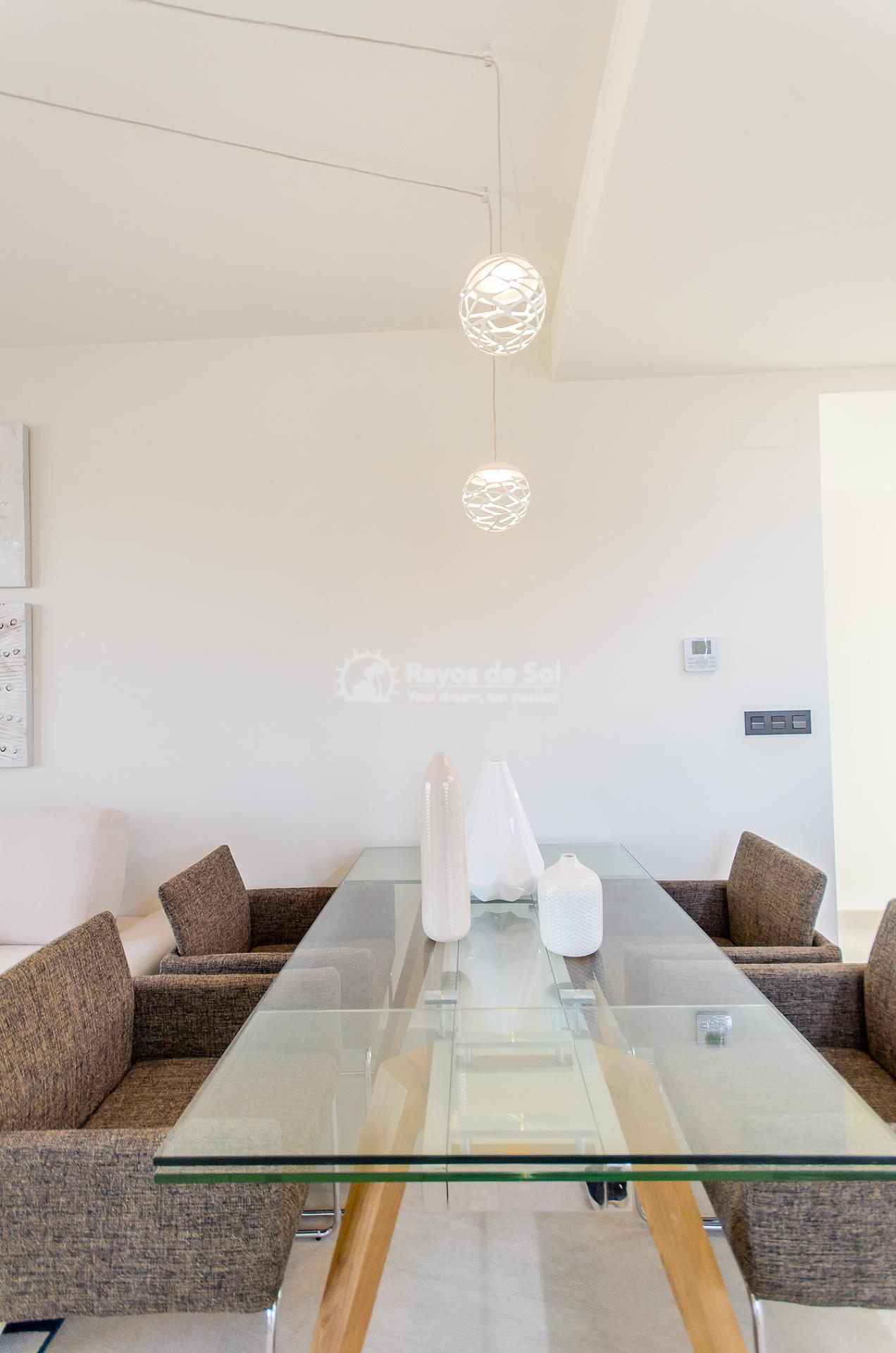 Penthouse  in Torrevieja, Costa Blanca (balcones-tf3d) - 54