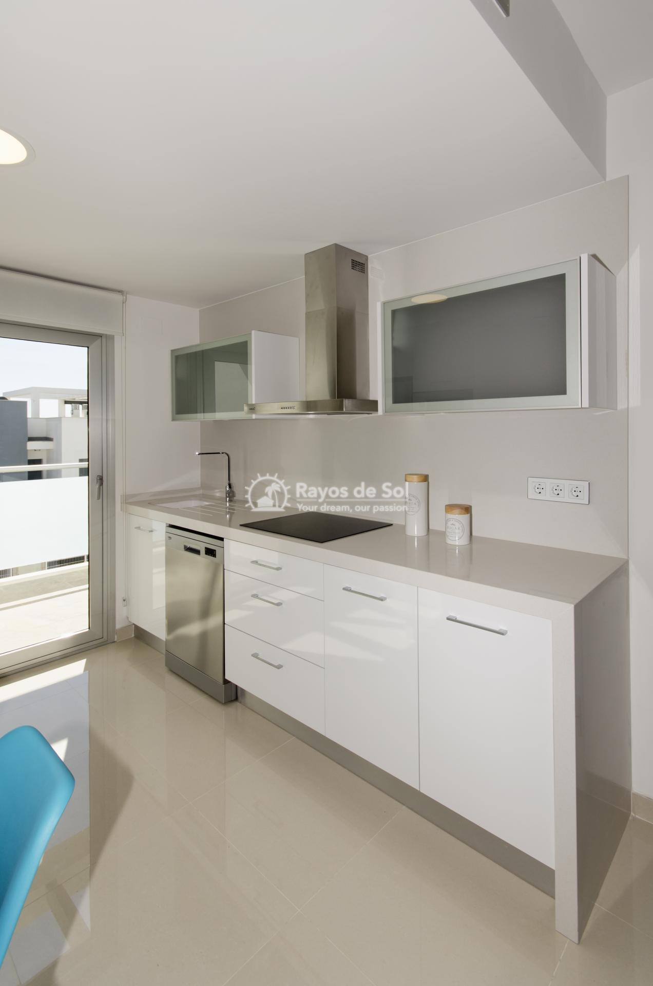 Penthouse  in Torrevieja, Costa Blanca (balcones-tf3d) - 59
