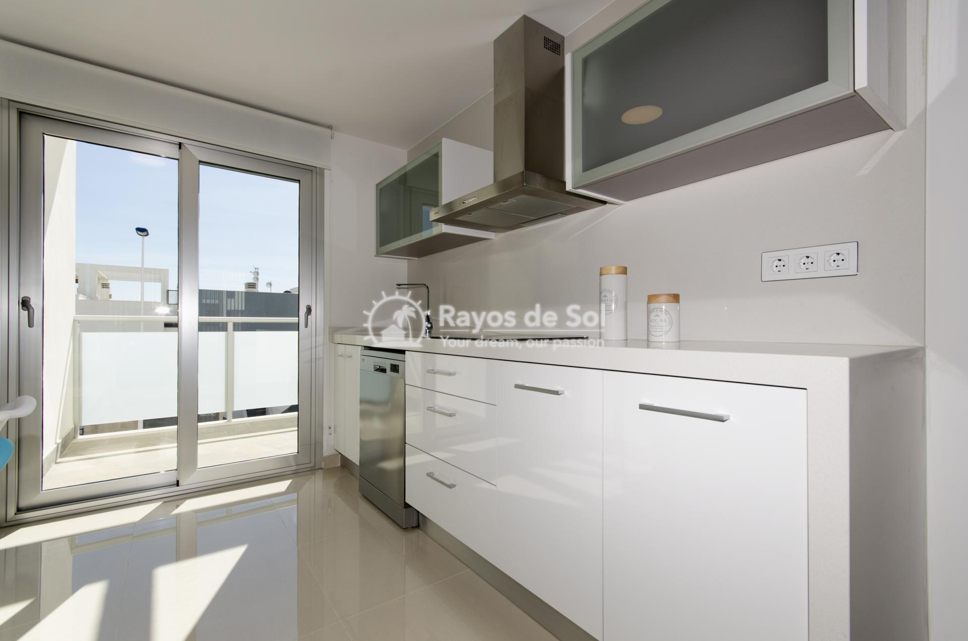 Penthouse  in Torrevieja, Costa Blanca (balcones-tf3d) - 66