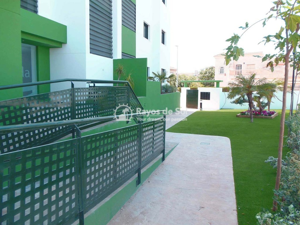 Apartment  in Mil Palmeras, Costa Blanca (garda-gfap-3d) - 14