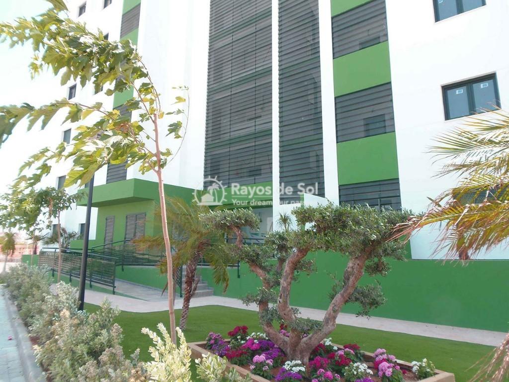 Apartment  in Mil Palmeras, Costa Blanca (garda-3d) - 13