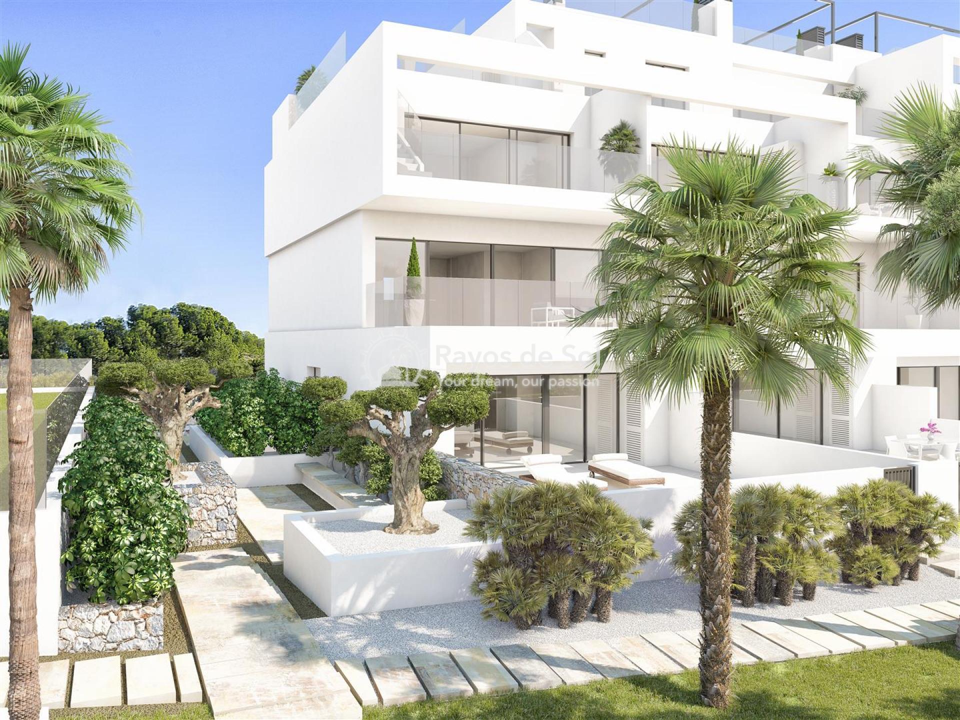 Apartment  in Las Colinas, Orihuela Costa, Costa Blanca (lcg-hinojo-2d) - 4