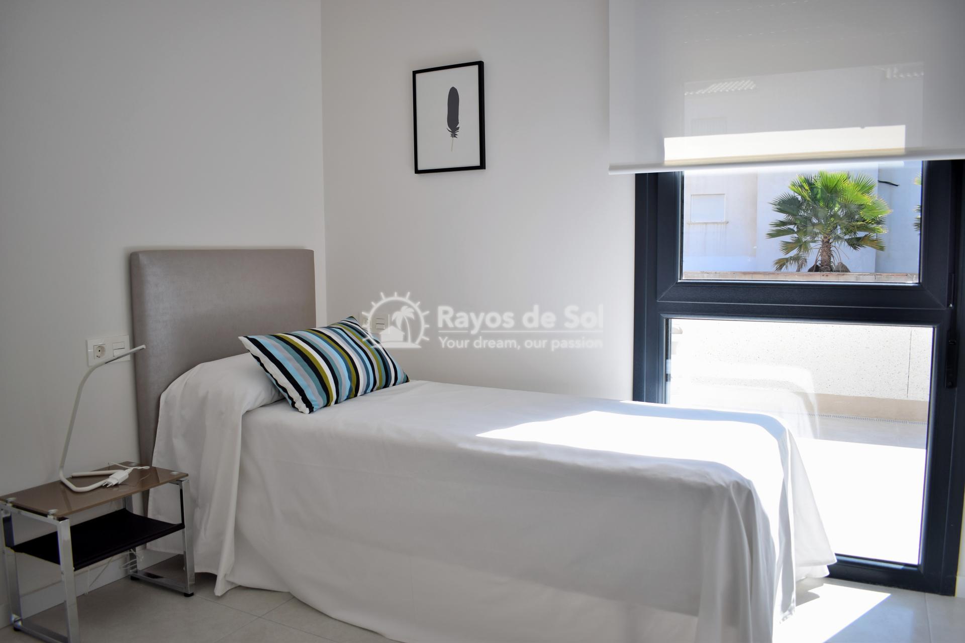 Ground Floor Apartment  in Punta Prima, Orihuela Costa, Costa Blanca (arenab-gf) - 31