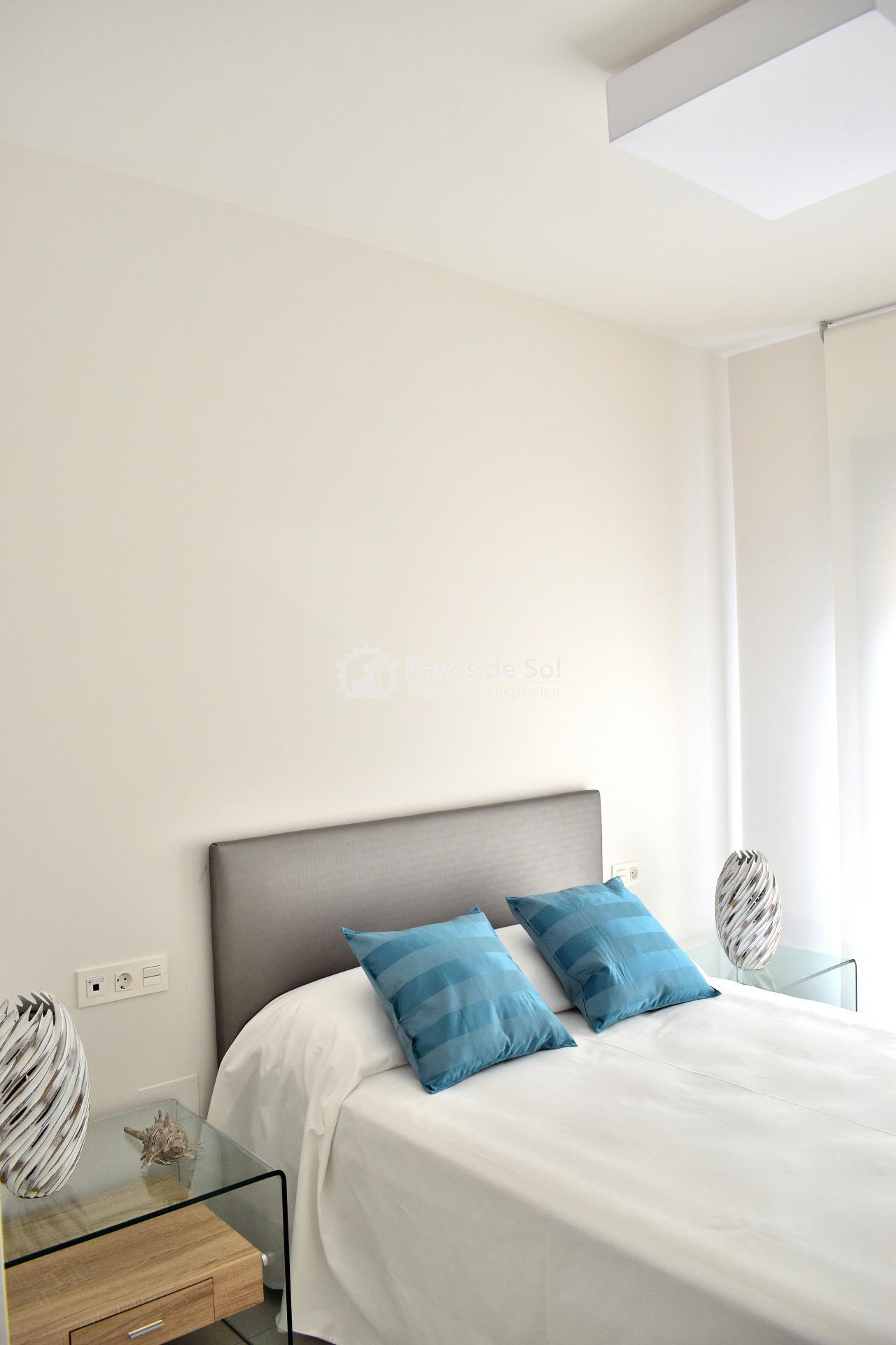 Ground Floor Apartment  in Punta Prima, Orihuela Costa, Costa Blanca (arenab-gf) - 19