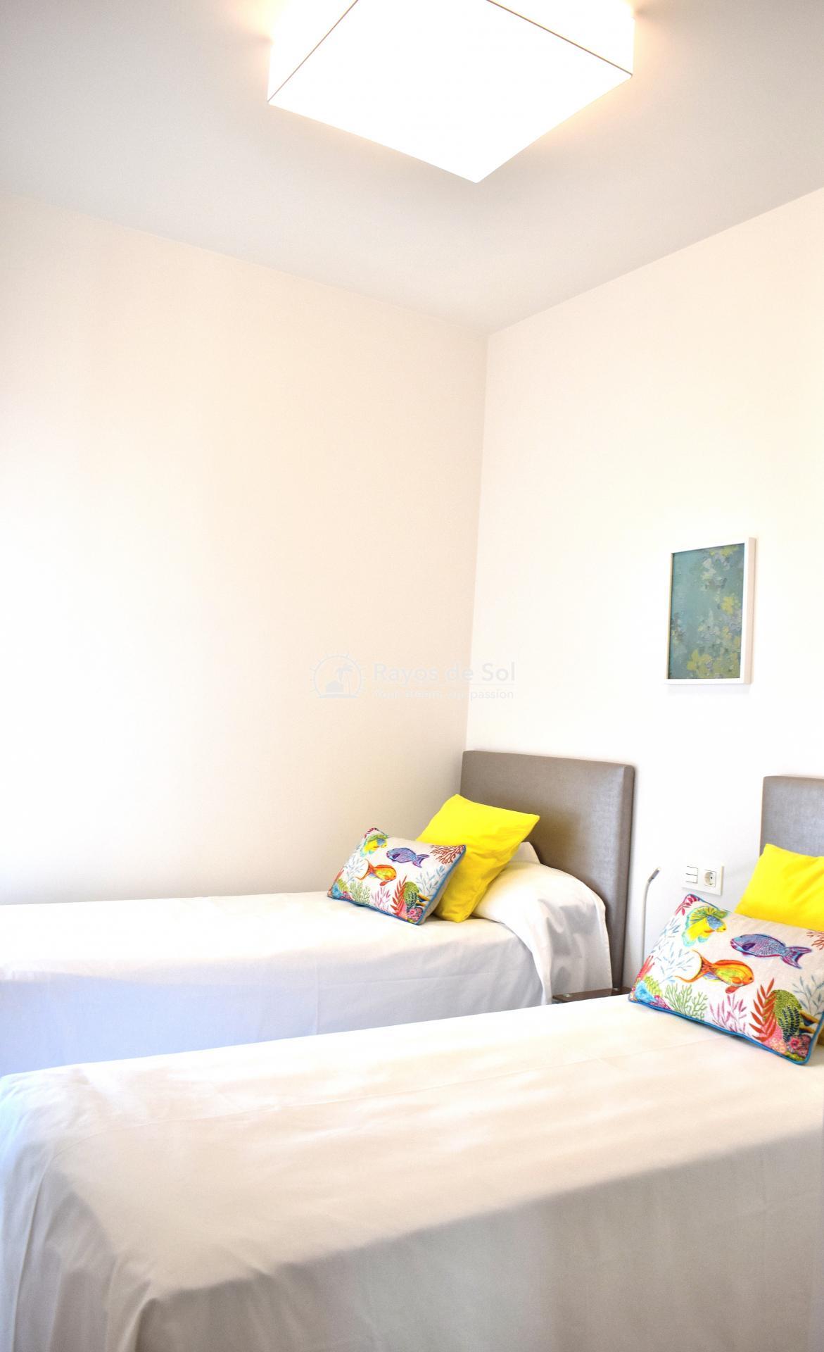 Ground Floor Apartment  in Punta Prima, Orihuela Costa, Costa Blanca (arenab-gf) - 33