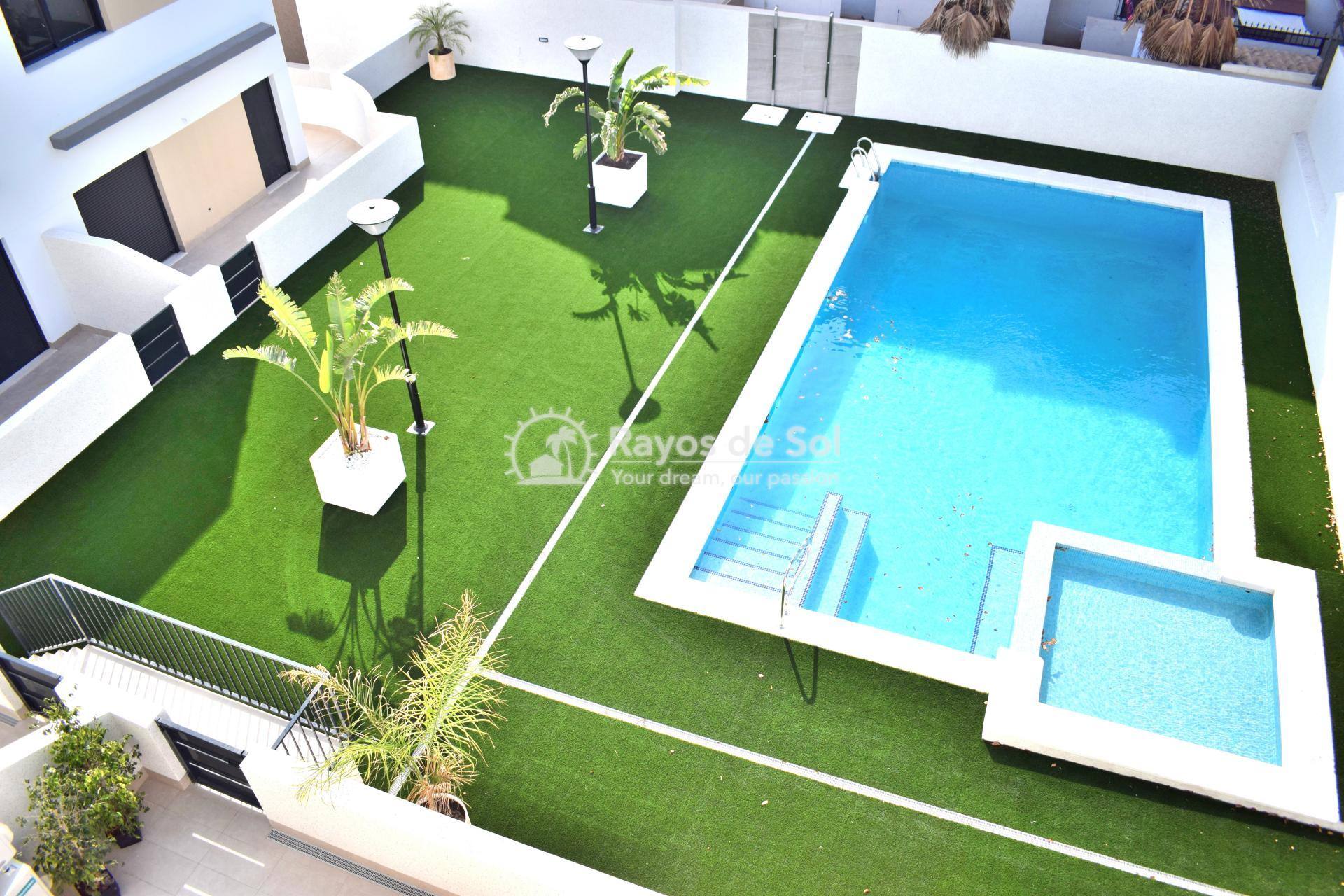 Ground Floor Apartment  in Punta Prima, Orihuela Costa, Costa Blanca (arenab-gf) - 40