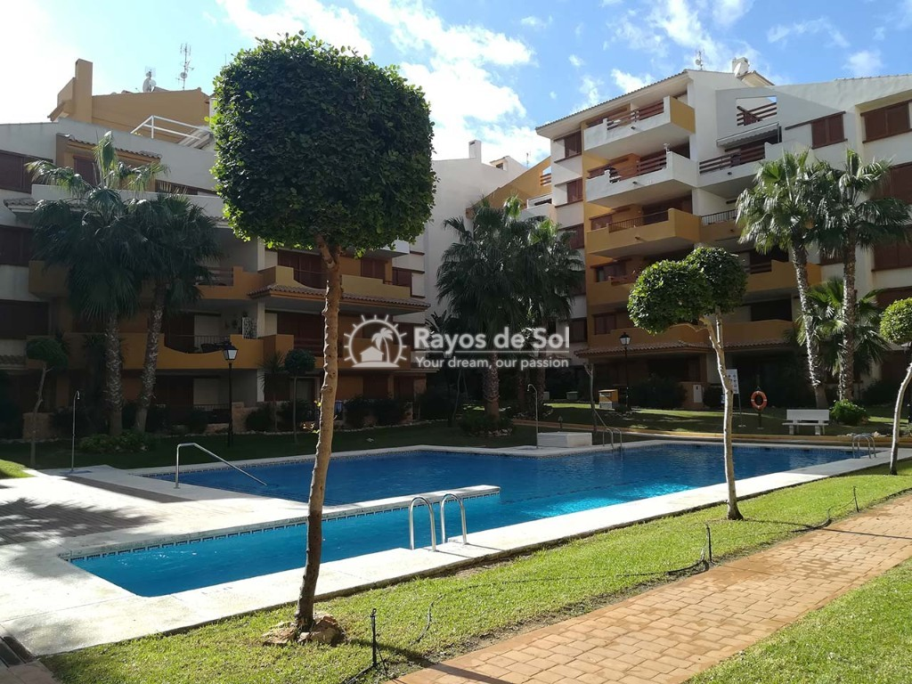 Apartment  in Punta Prima, Orihuela Costa, Costa Blanca (recoleta3-3d) - 24