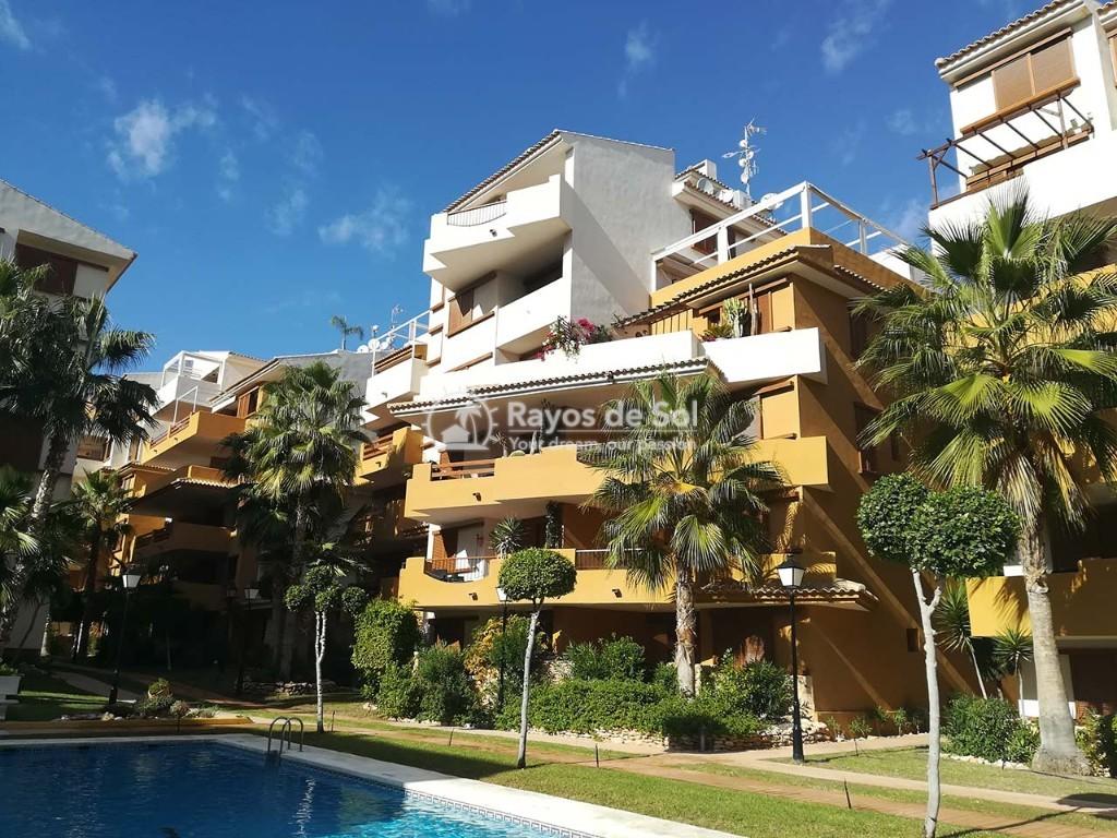 Apartment  in Punta Prima, Orihuela Costa, Costa Blanca (recoleta3-3d) - 25