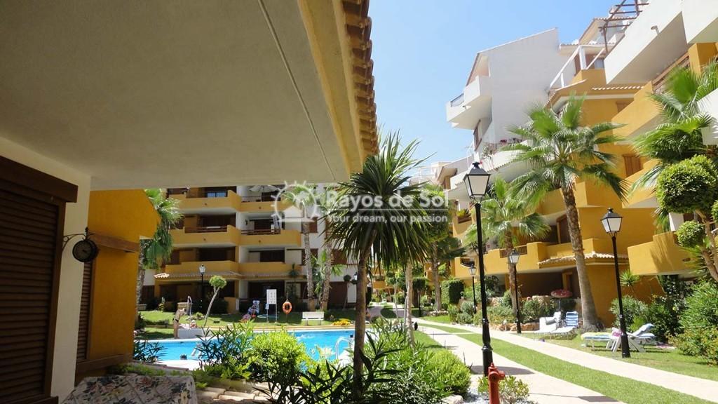 Apartment  in Punta Prima, Orihuela Costa, Costa Blanca (recoleta3-3d) - 31