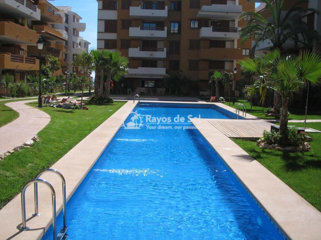 Apartment  in Punta Prima, Orihuela Costa, Costa Blanca (recoleta3-3d) - 32