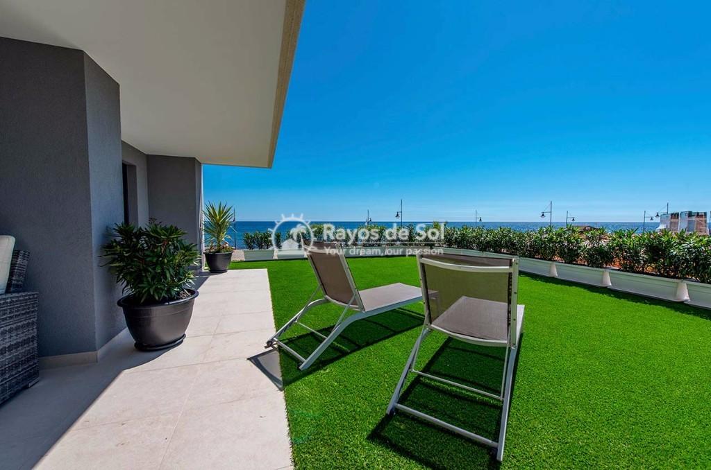 Apartment  in Punta Prima, Orihuela Costa, Costa Blanca (panoramam-gf-2d) - 14
