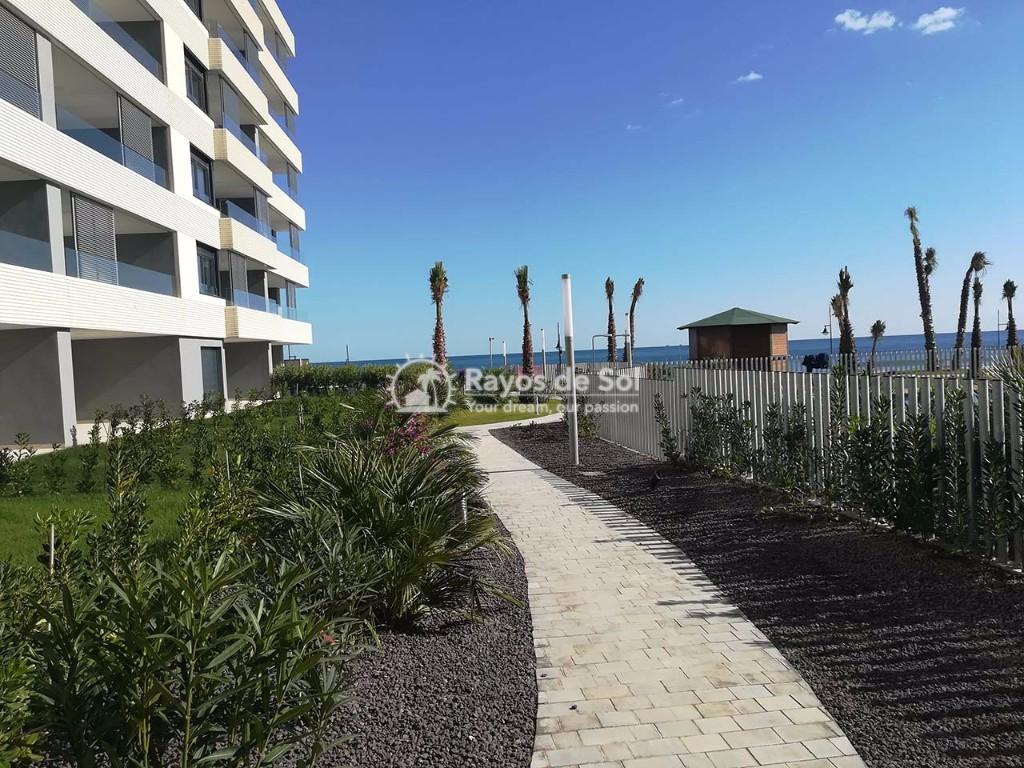 Apartment  in Punta Prima, Orihuela Costa, Costa Blanca (panoramam-gf-2d) - 18