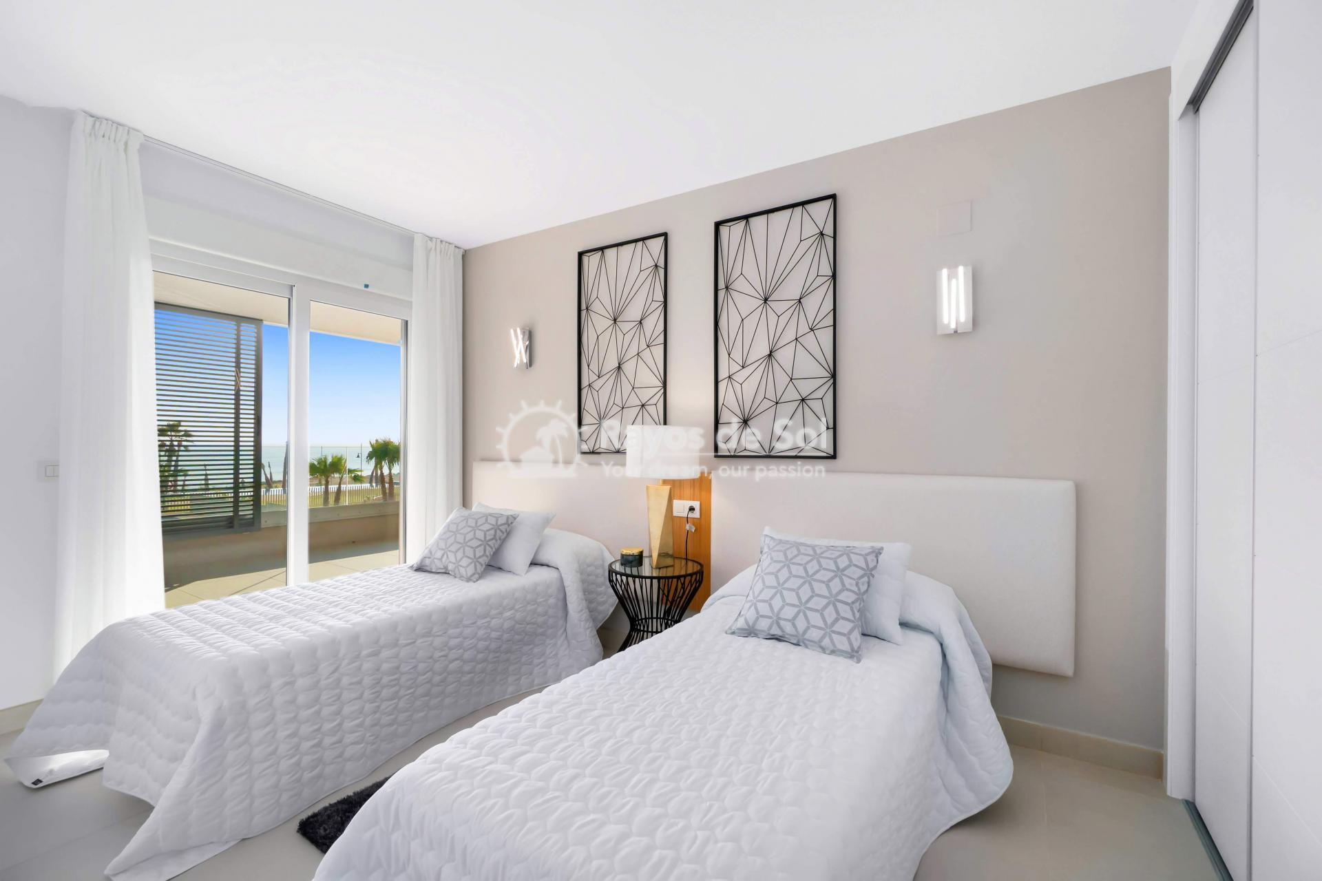 Apartment  in Punta Prima, Orihuela Costa, Costa Blanca (panoramam-3d) - 20