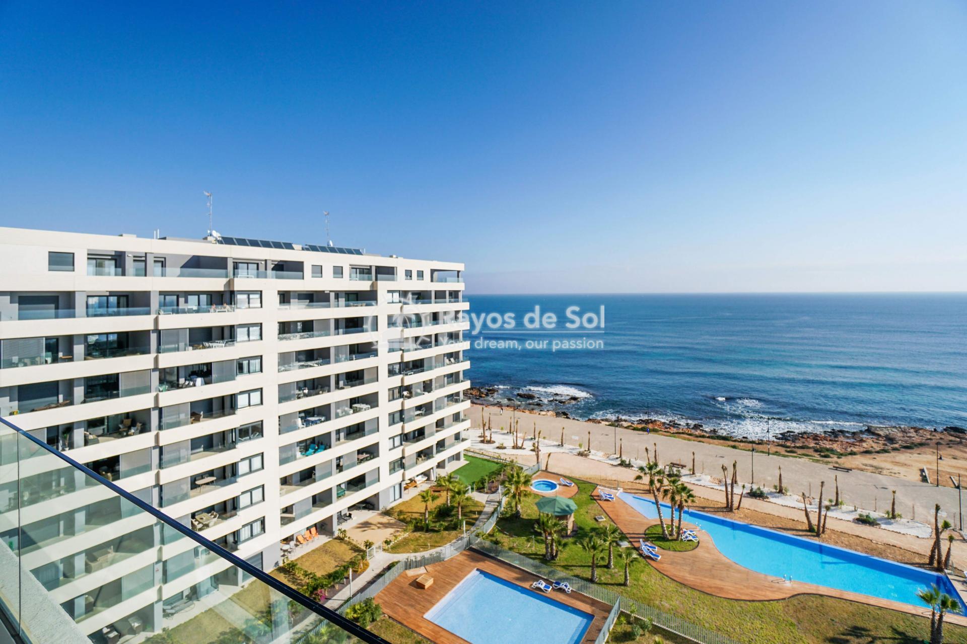 Apartment  in Punta Prima, Orihuela Costa, Costa Blanca (panoramam-3d) - 14