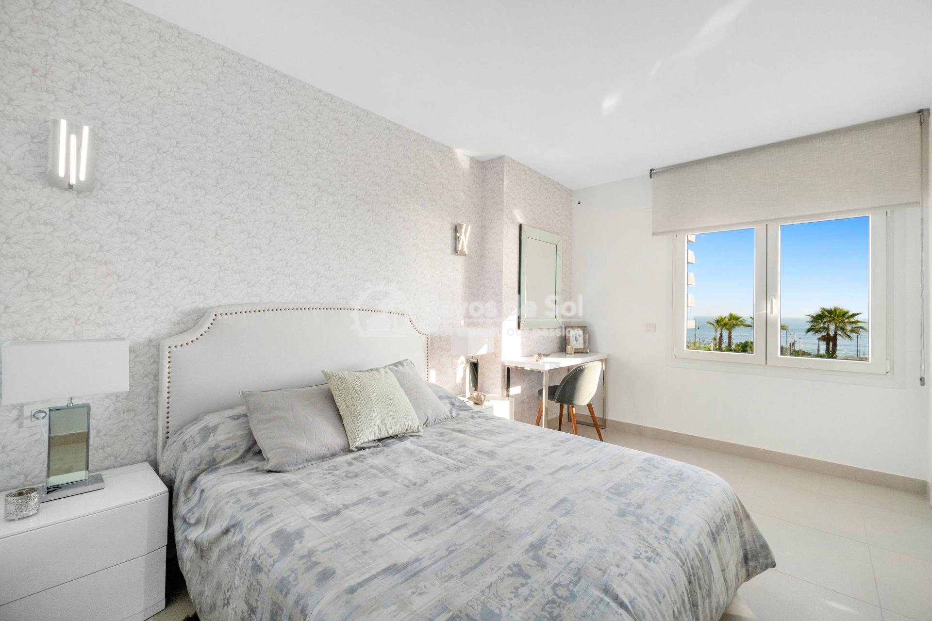Apartment  in Punta Prima, Orihuela Costa, Costa Blanca (panoramam-3d) - 18