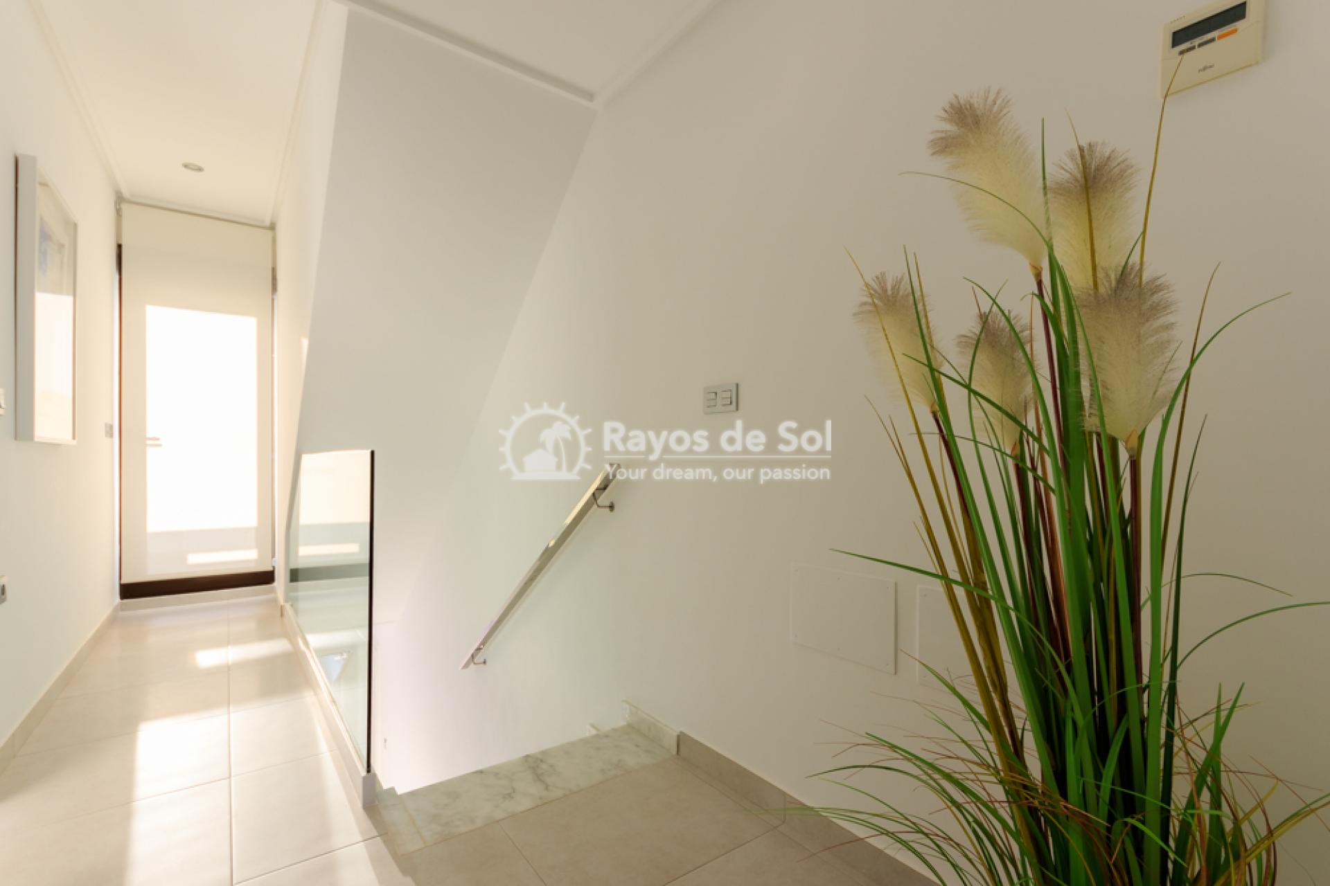 Townhouse  in Torrevieja, Costa Blanca (bhomest) - 8