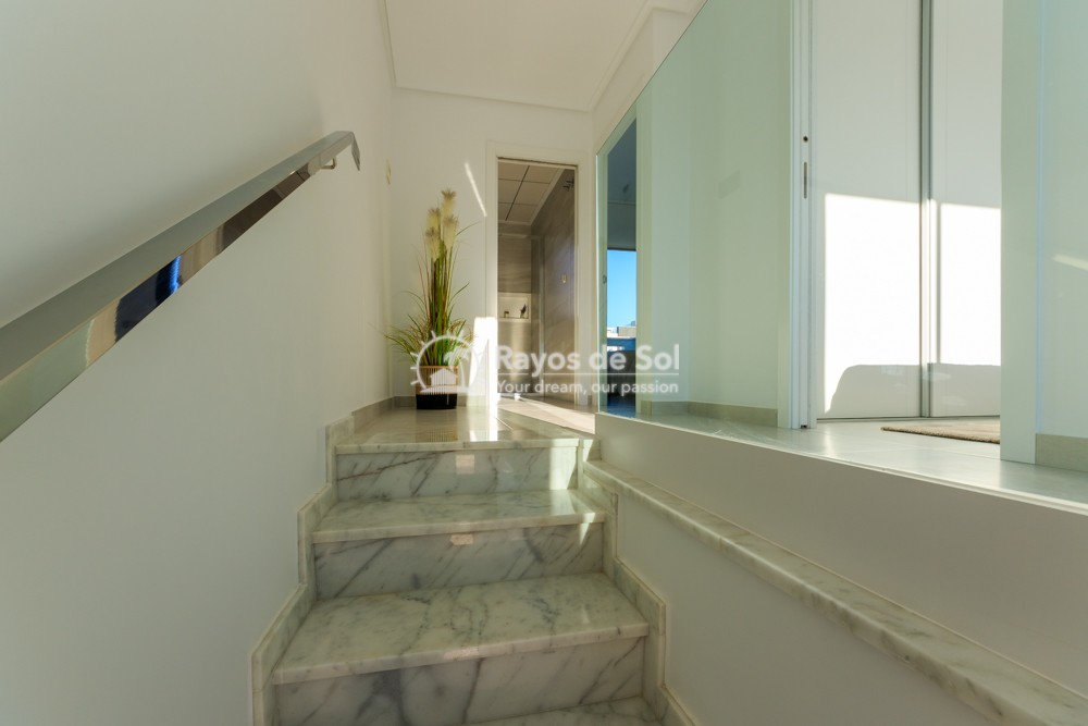 Townhouse  in Torrevieja, Costa Blanca (bhomest) - 7