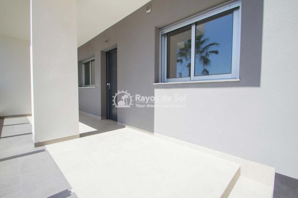 Apartment  in Villamartin, Orihuela Costa, Costa Blanca (sungolfb-1d) - 13