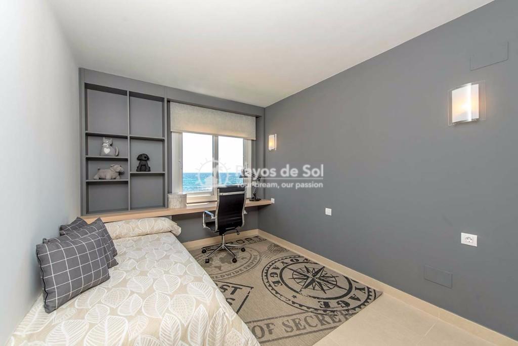 Apartment  in Punta Prima, Orihuela Costa, Costa Blanca (panoramam-gf-3d) - 14