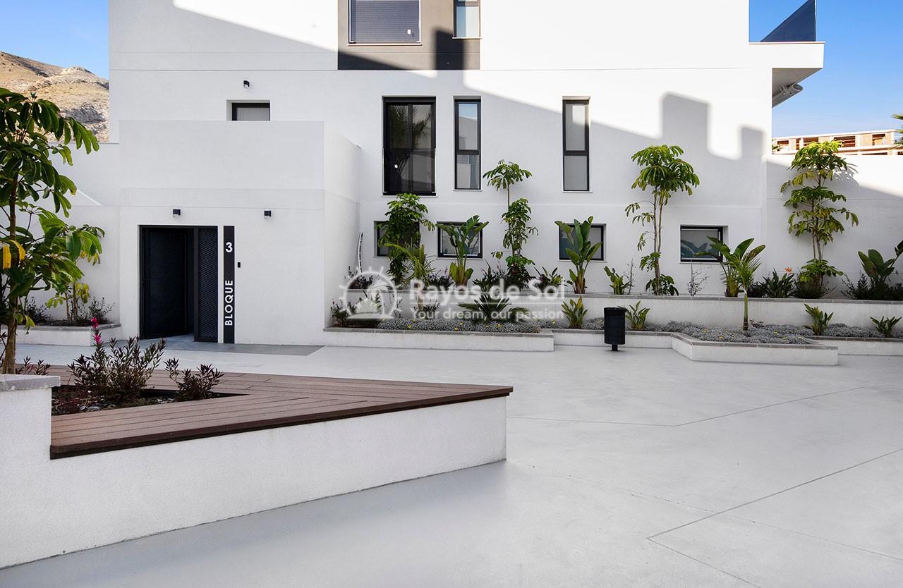 Apartment  in Finestrat, Costa Blanca (medviews2) - 55