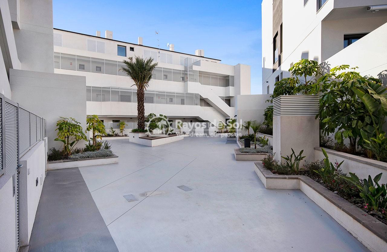 Apartment  in Finestrat, Costa Blanca (medviews2) - 49
